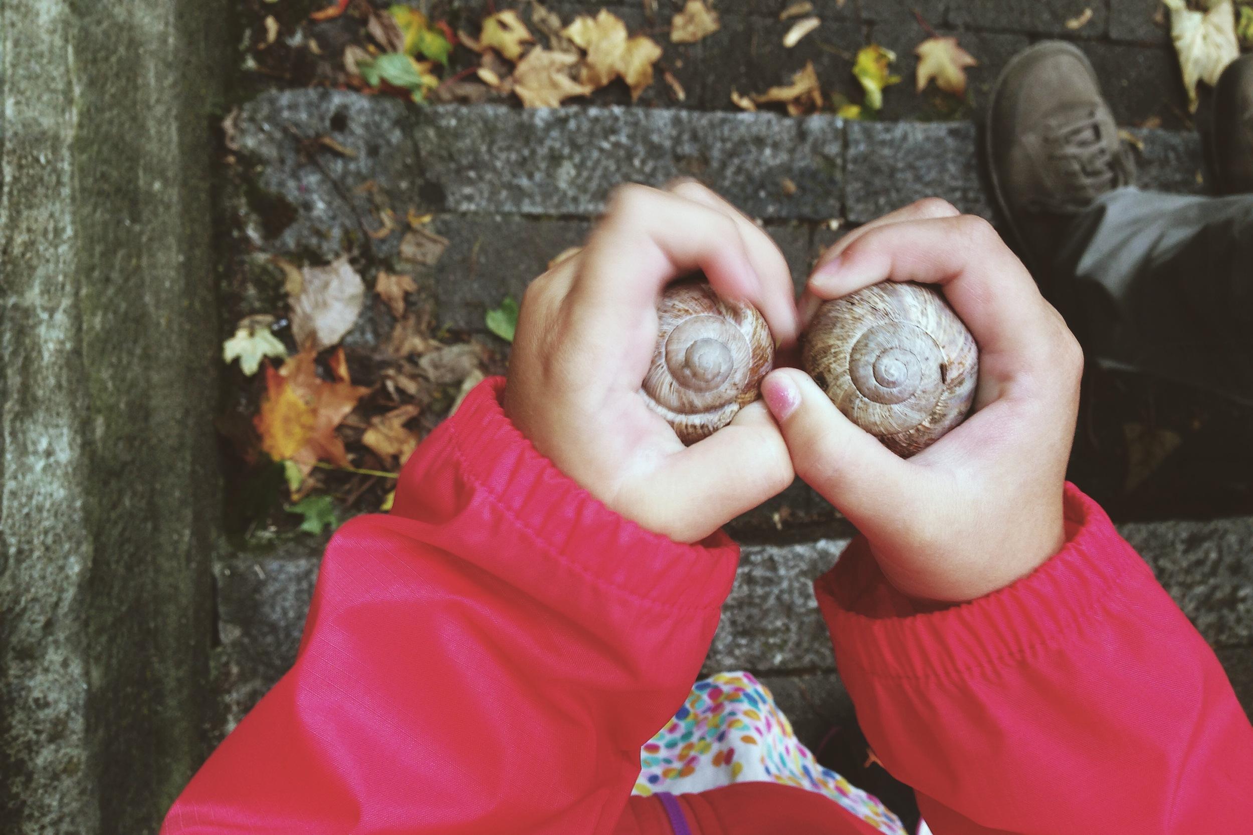 snailshells.JPG