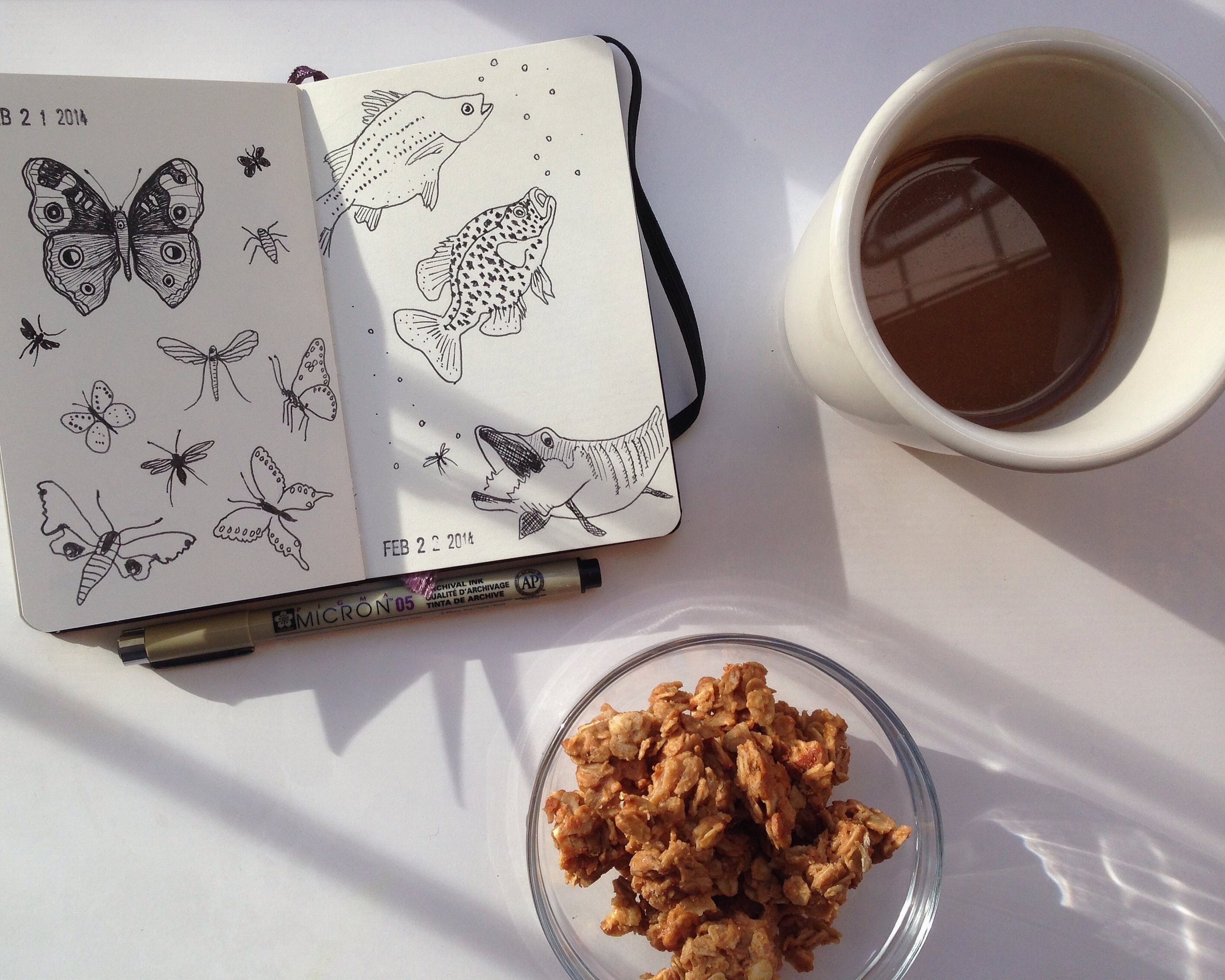53/365 | year of creative habits