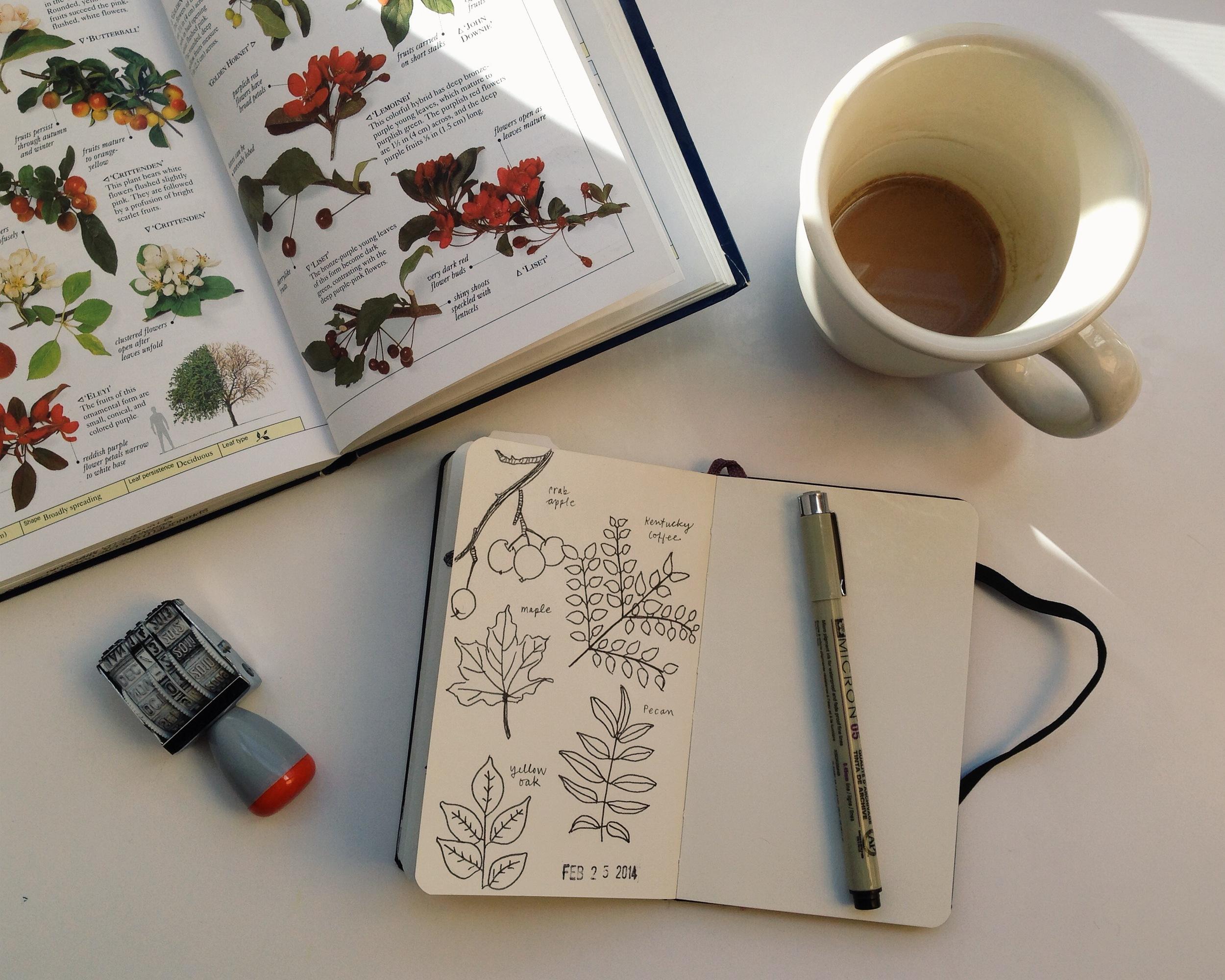 56/365   year of creative habits
