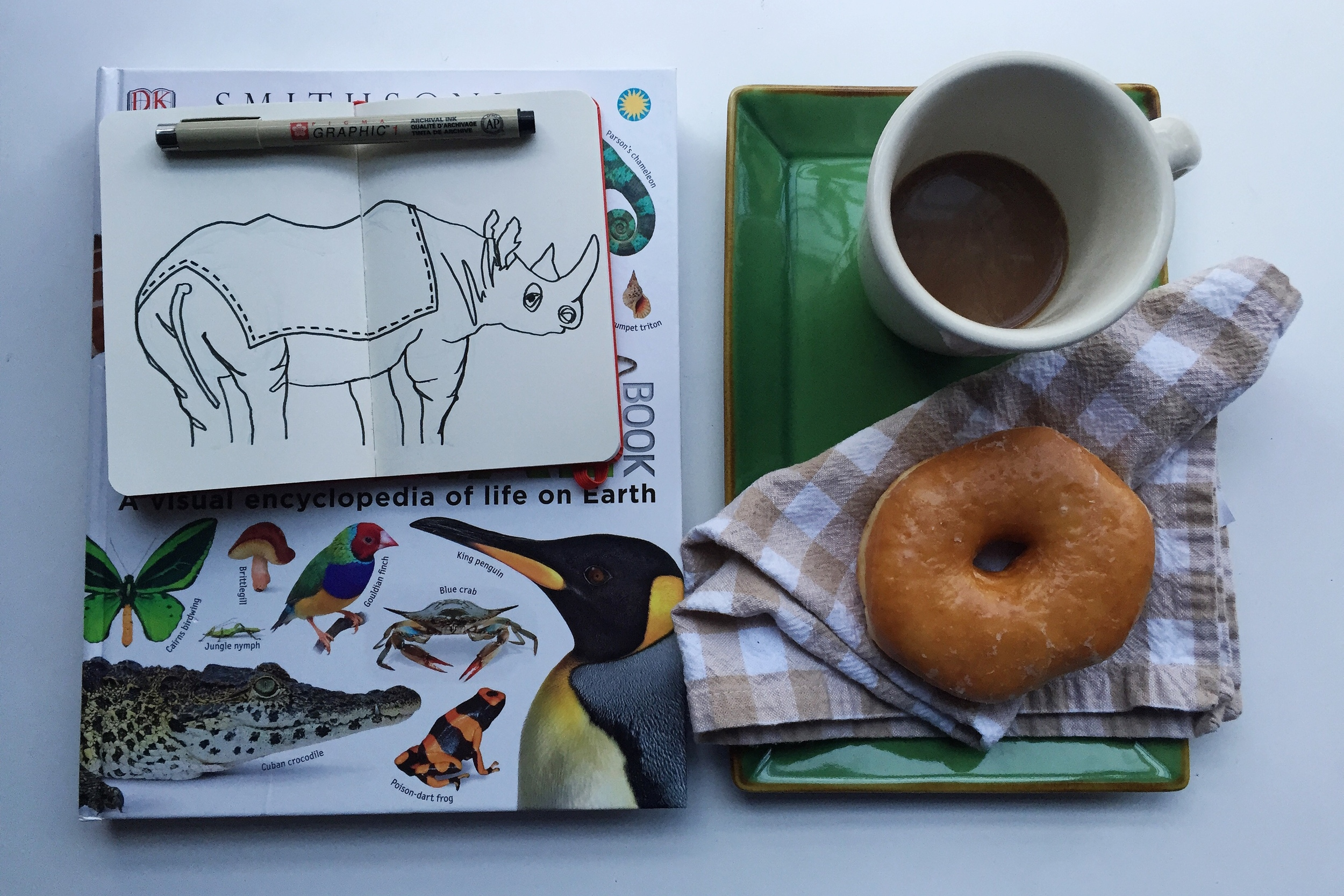 rhino wants a donut | year of creative habits