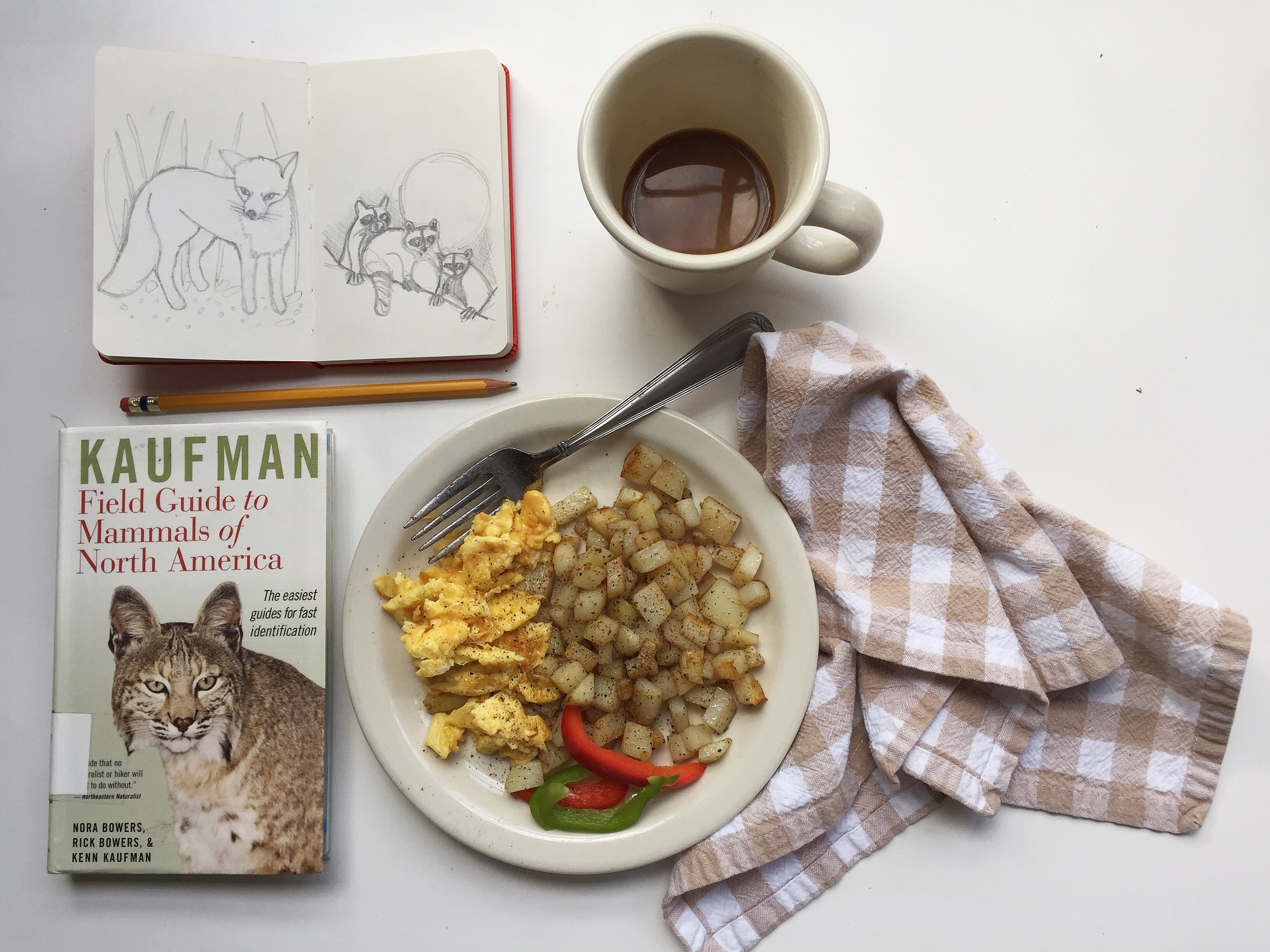 mammals | year of creative habits