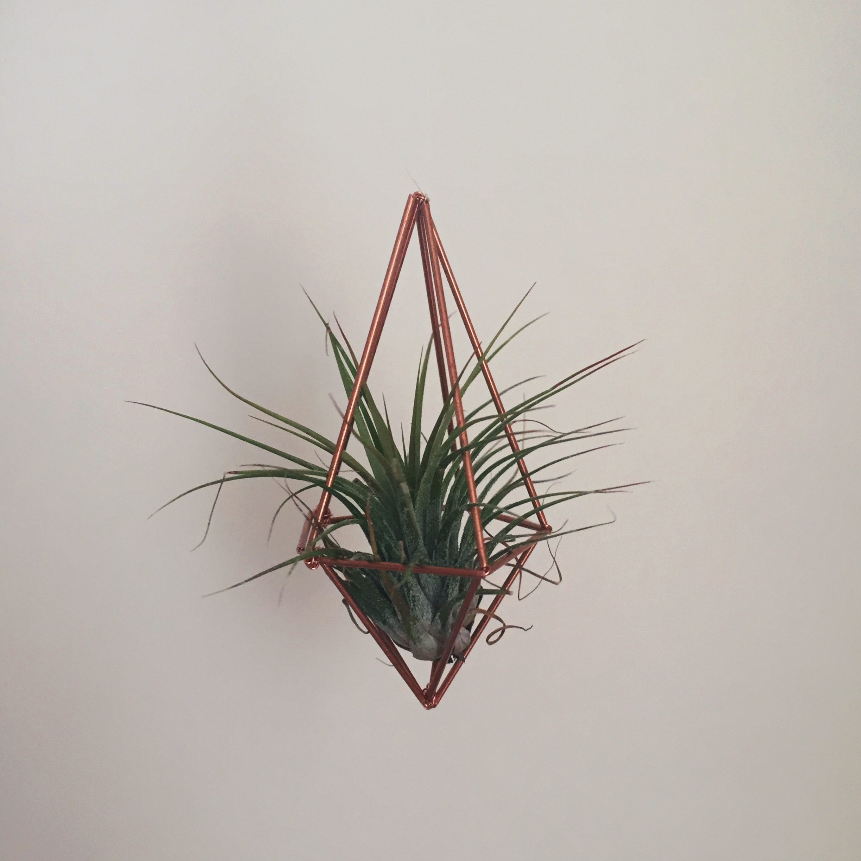 crystal moody | geometric planter