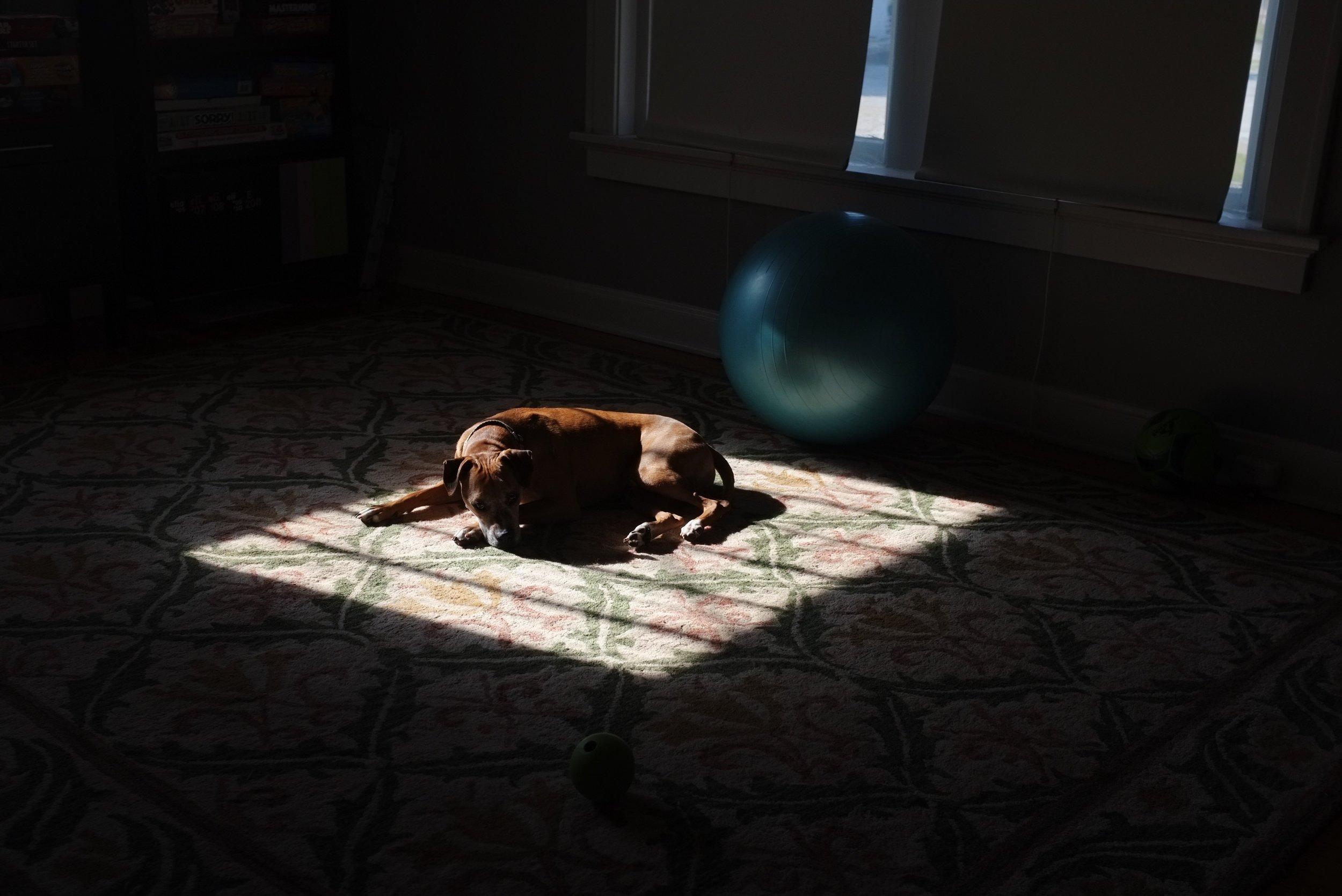 crystal moody   life through my lens