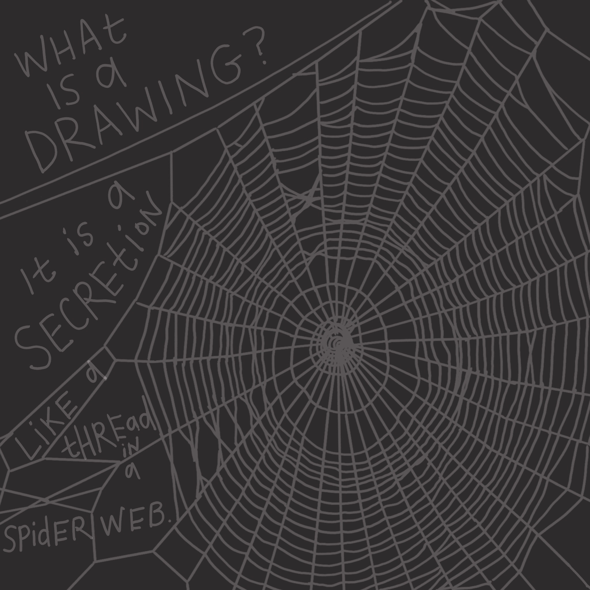 """""""What is a drawing? It is a secretion, like a thread in a spider's web. ... It is a knitting, a spiral, a spiderweb and other significant organizations of space."""" -Louise Bourgeois"""