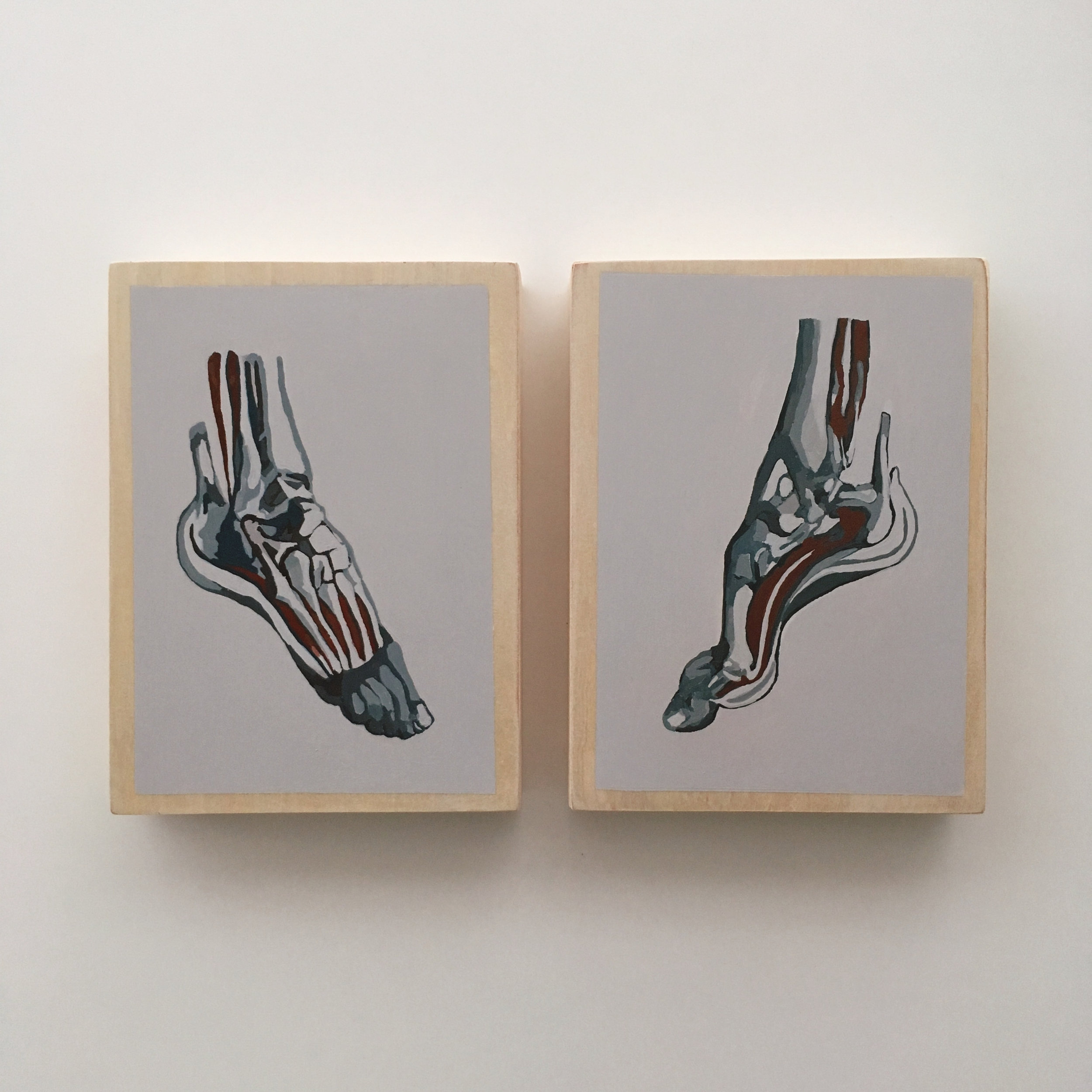 crystal moody | foot anatomy series