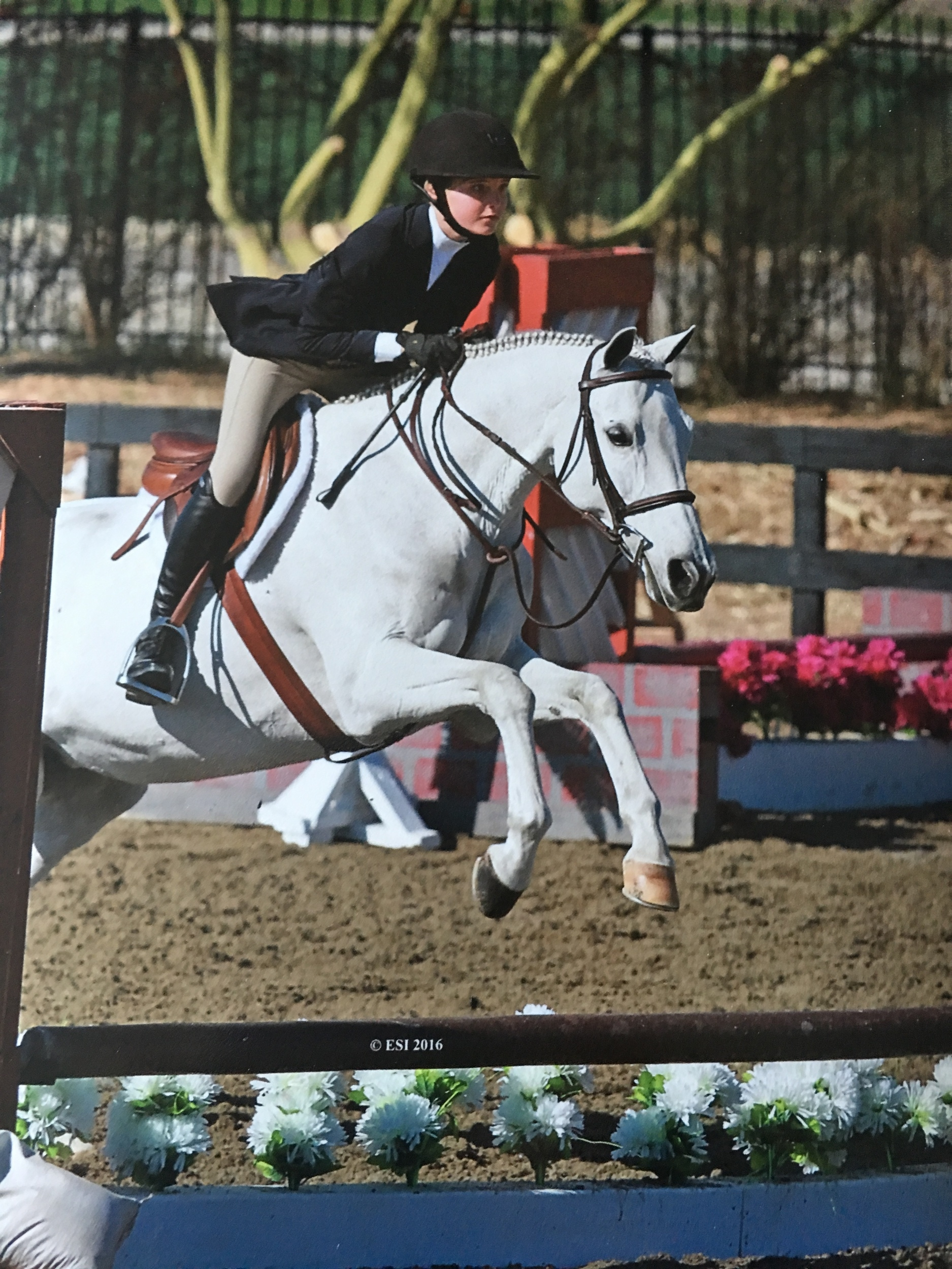 Georgia and Maggie Mid Circuit Champions Short Stirrup Eq