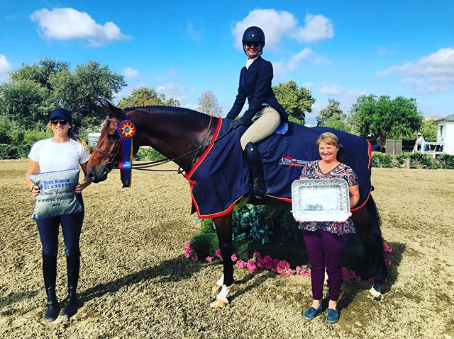 Great wrap up for day two @blenheimequisports ⭐️ Erin Duffy and Romeo owned by Cathy Hayes took the blue in the USHJA Green Horse Incentive Championship 👑🏆🥇