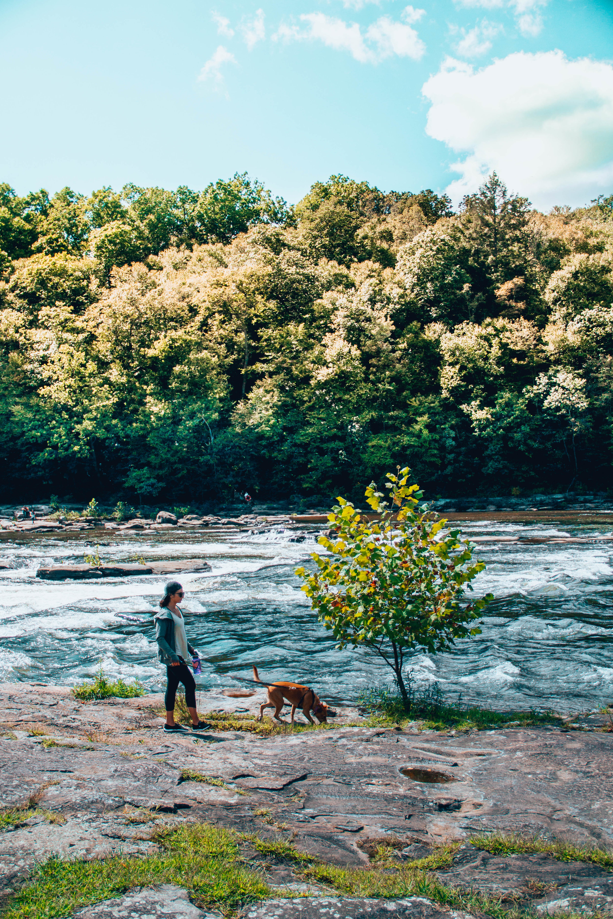 Walking Olyvia by the Youghiogheny River