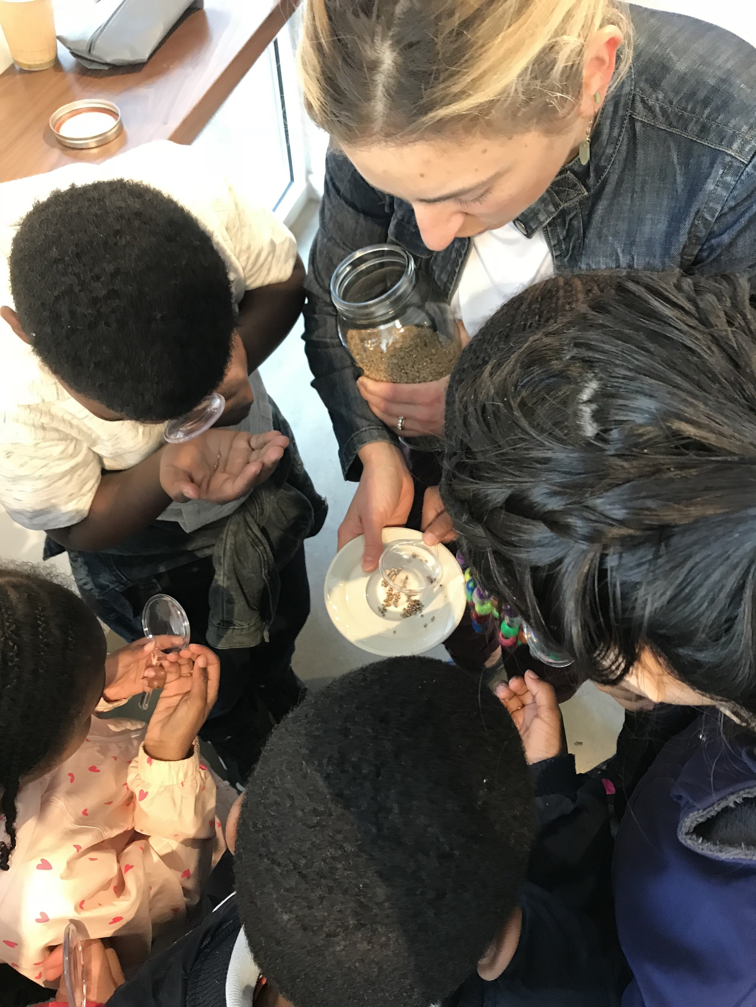 Leading a school field trip at Seylou Bakery + Mill: Investigating Maryland-grown millet