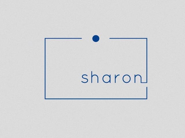 sharonphotogbox4.jpg