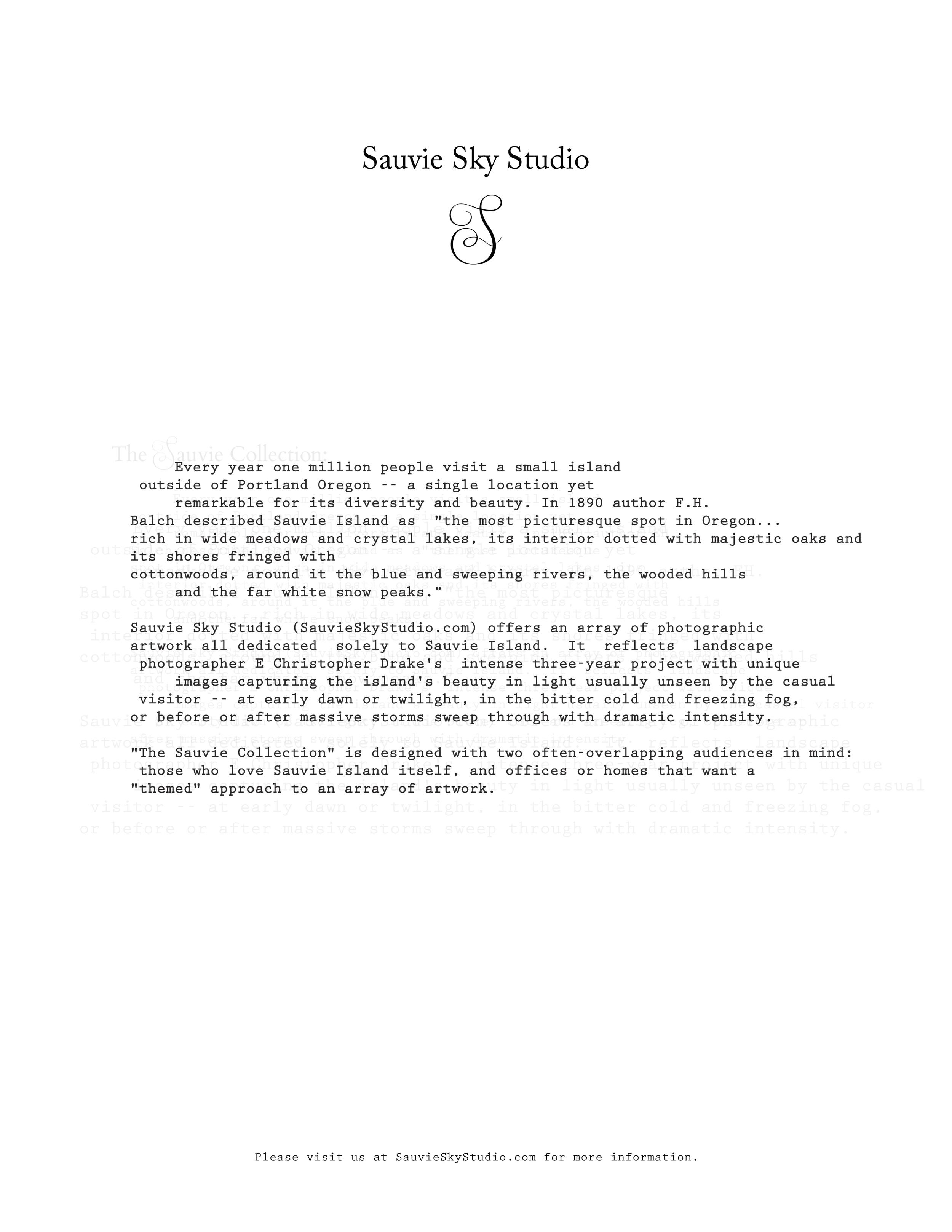 SauvieStationaryBlackBold4.jpg