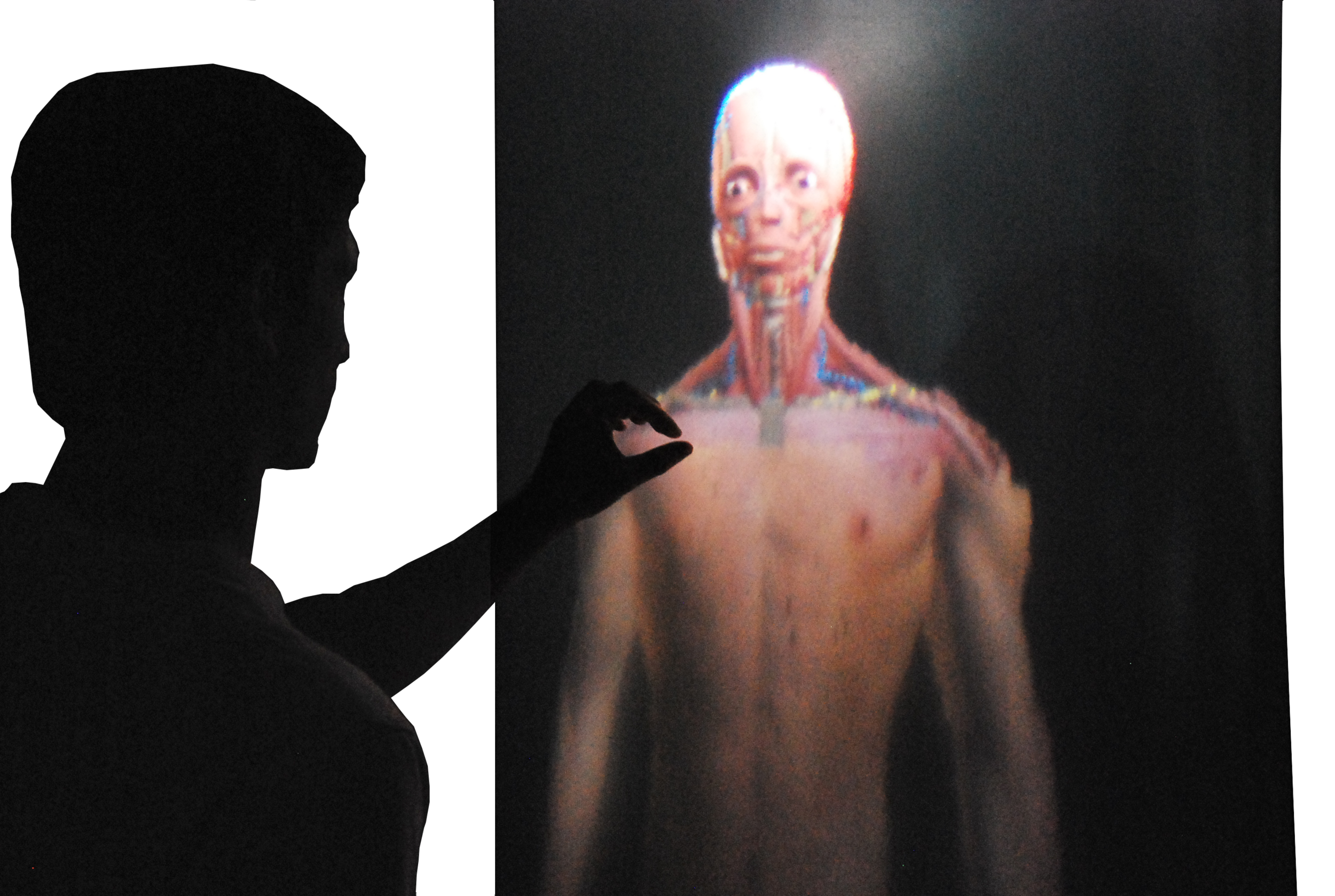 bodipod (2012): remote pinch gesture enlarging anatomical model