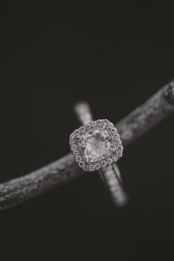 Chandra+Jace(Engagement)-096.jpg