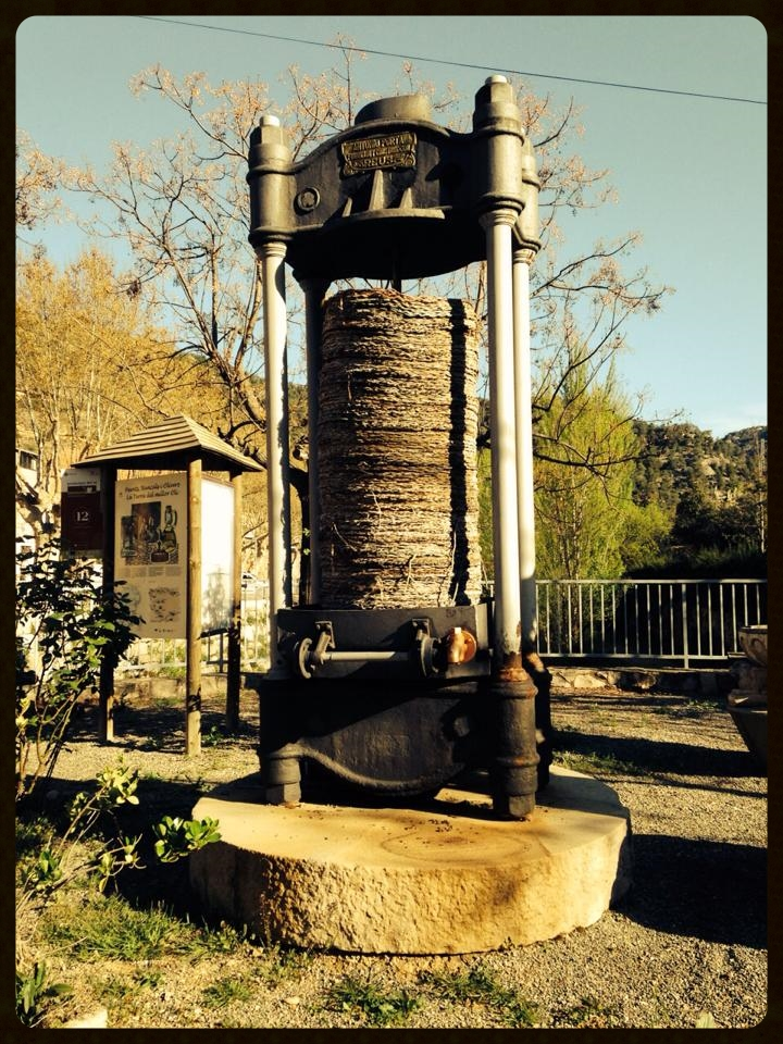 Old School Olive Oil Press...Awesome