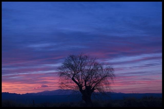 sunset-2788730_640.jpg