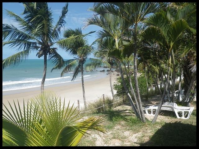 beach-2327709_640.jpg