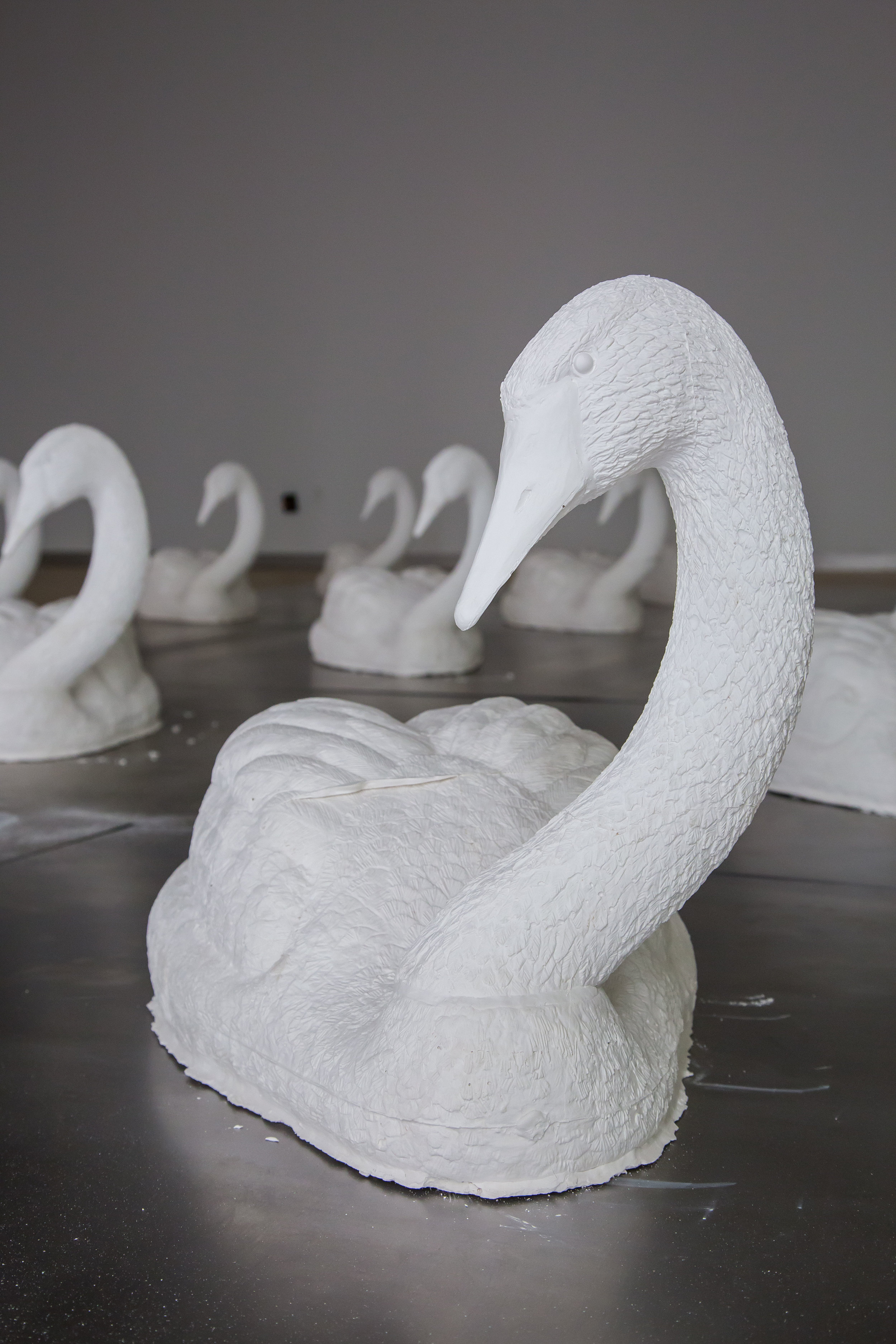 Swan_02.jpg