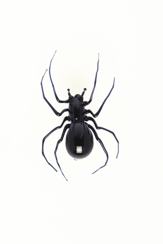 Vittorio Costantini, Black Widow (2005, soda-lime glass, 15/16 x 5/8 x 5/16 inches), VC.45