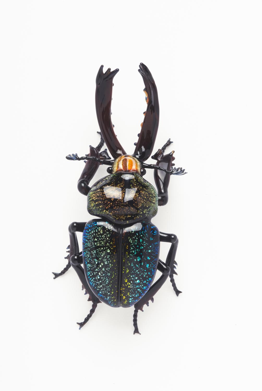Vittorio Costantini, Cerambycidae (2007, soda-lime glass, 2 1/2 x 1 1/4 x 3/4 inches), VC.142