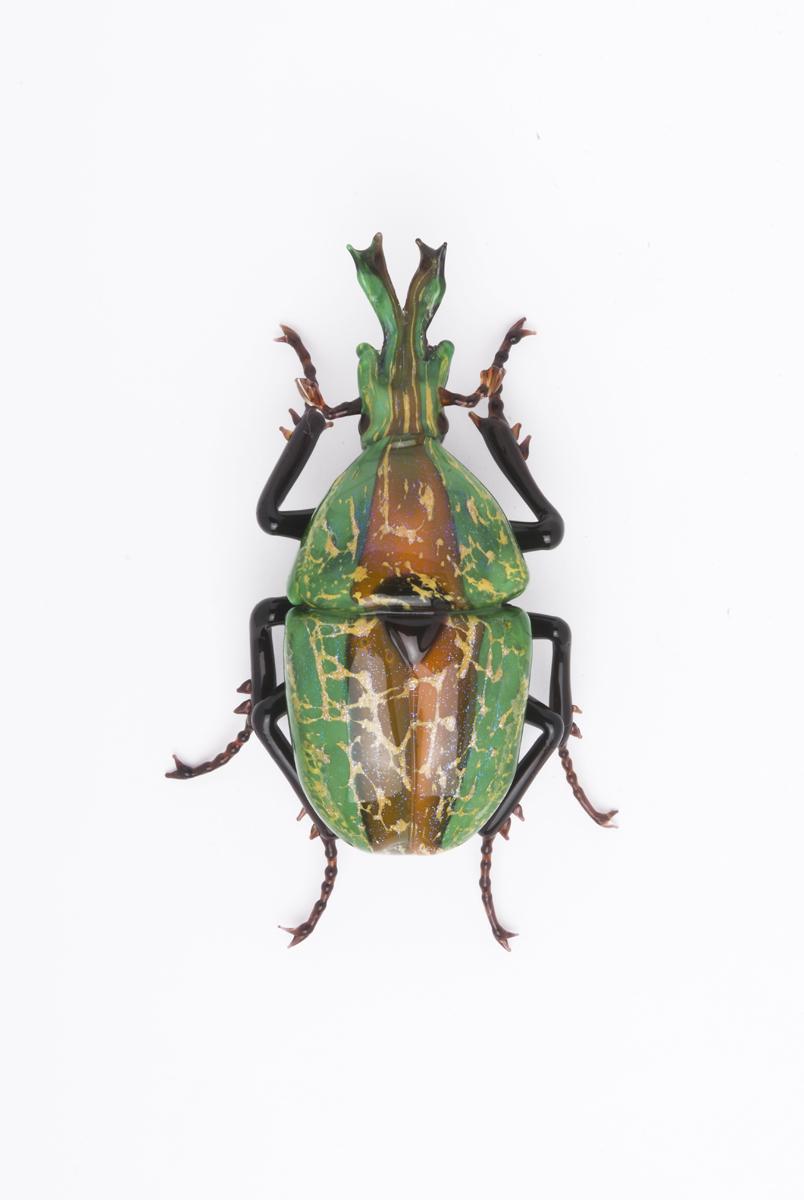 Vittorio Costantini, Eudicella Scarabaeidae (Fantasy) (2009, soda-lime glass, 2 1/4 inches), VC.168
