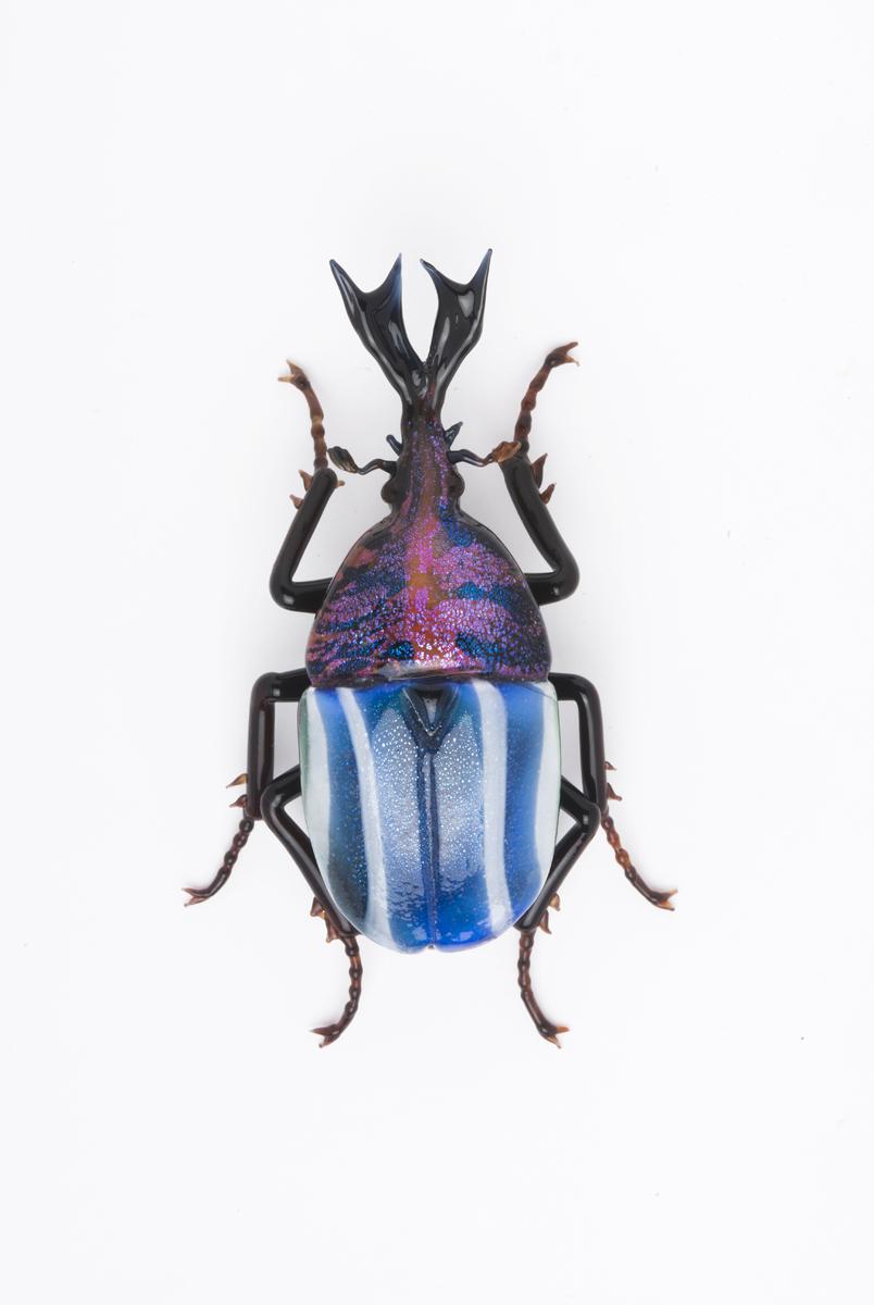 Vittorio Costantini, Eudicella Scarabaeidae (2009, soda-lime glass, 2 5/8 inches), VC.173