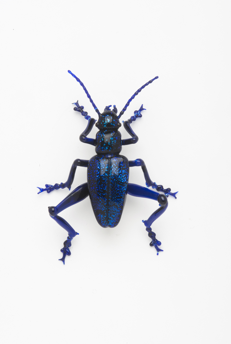 Vittorio Costantini,  Sagra Beetle  (2009, soda-lime glass, 2 1/4 inches), VC.191