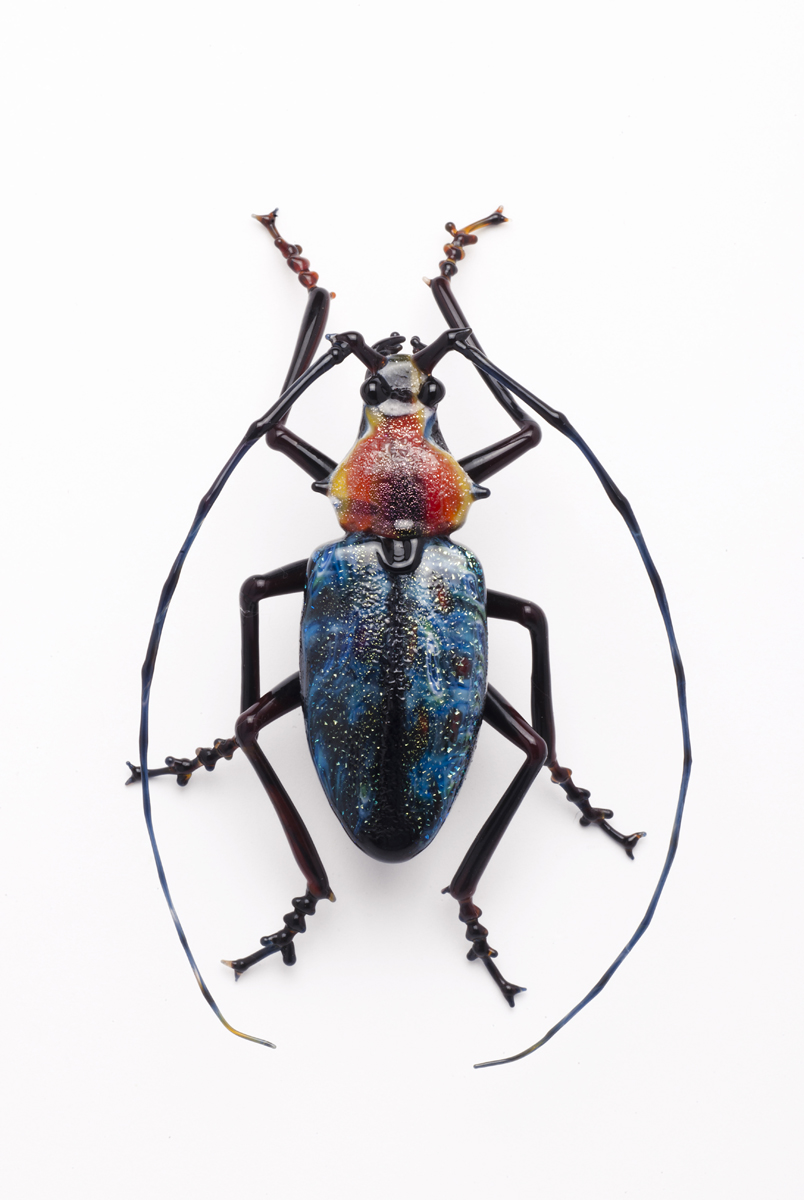 Vittorio Costantini, Cerambycidae (2009, soda-lime glass, 3 inches), VC.205