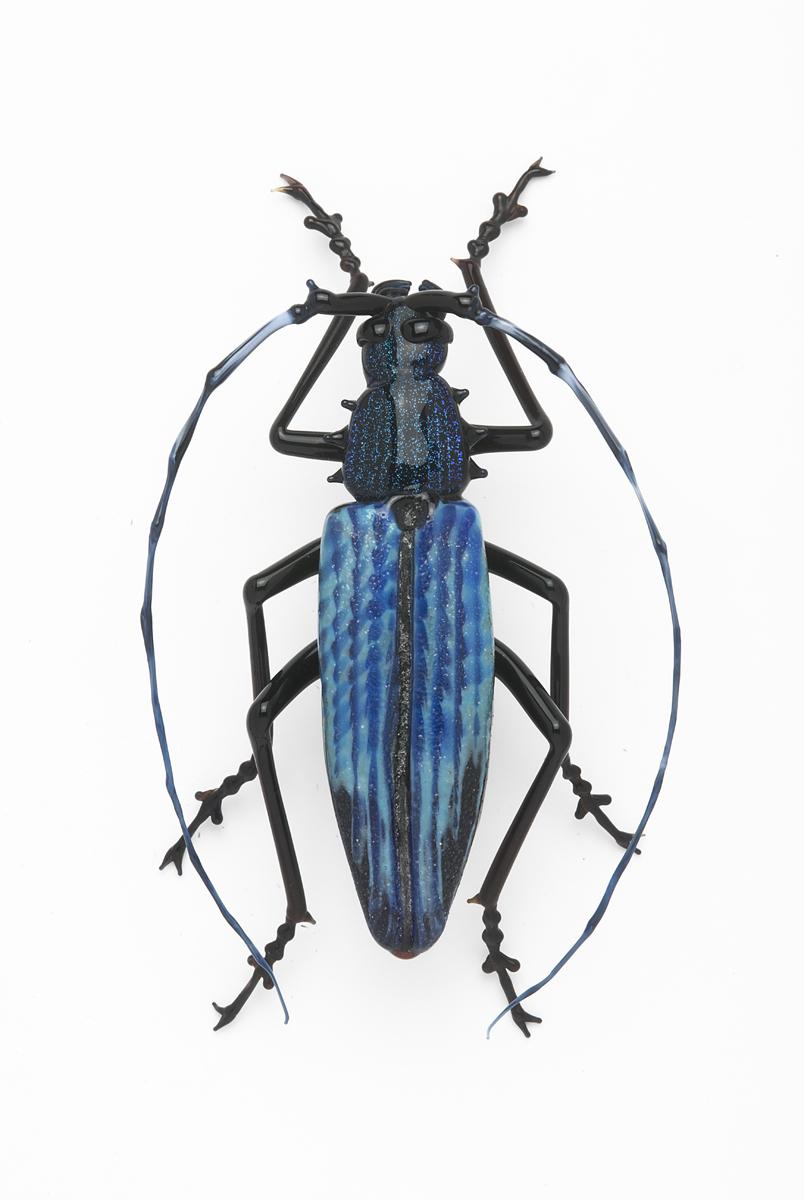 Vittorio Costantini, Cerambycidae (2009, soda-lime glass, 3 1/8 inches), VC.202