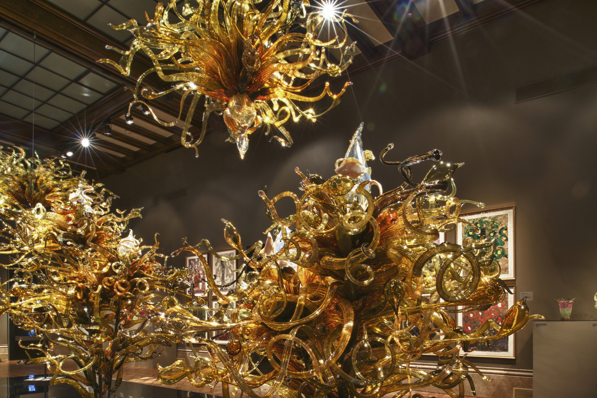 Dale Chihuly,   Laguna Murano Chandelier   (Paine Art Center, Oshkosh, Wisconsin, 2013)