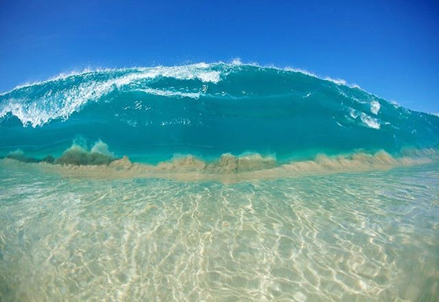 Keiki Shorey doing its thing Hawaii #2011