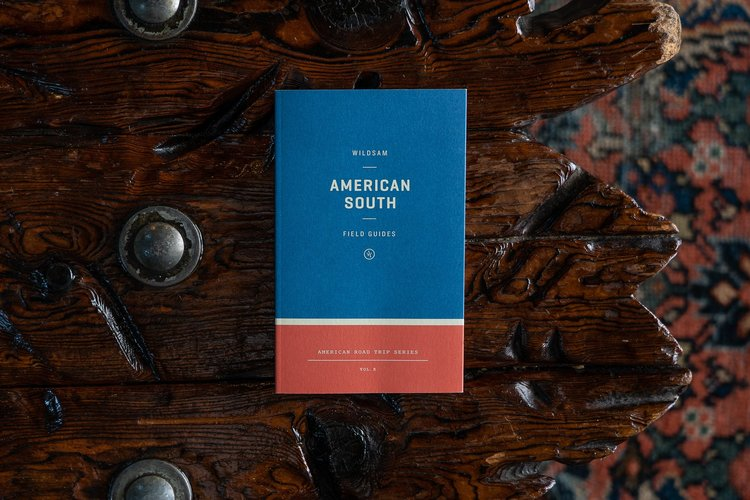 AmercianSouth.jpg