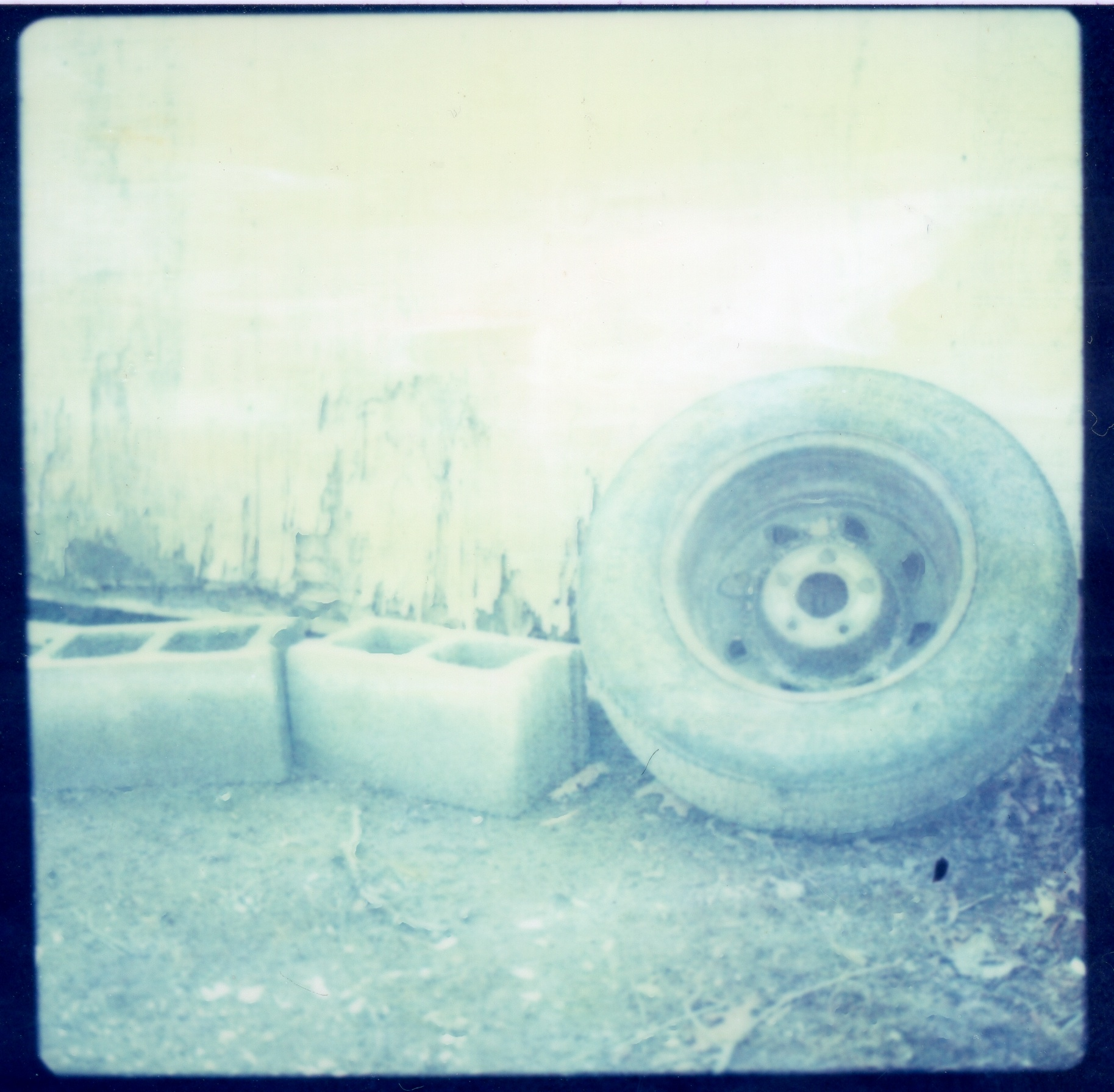 © 2013 Kat Phillips. Hasselblad 500C with Polaroid Polacolor Ultraviolet Film.