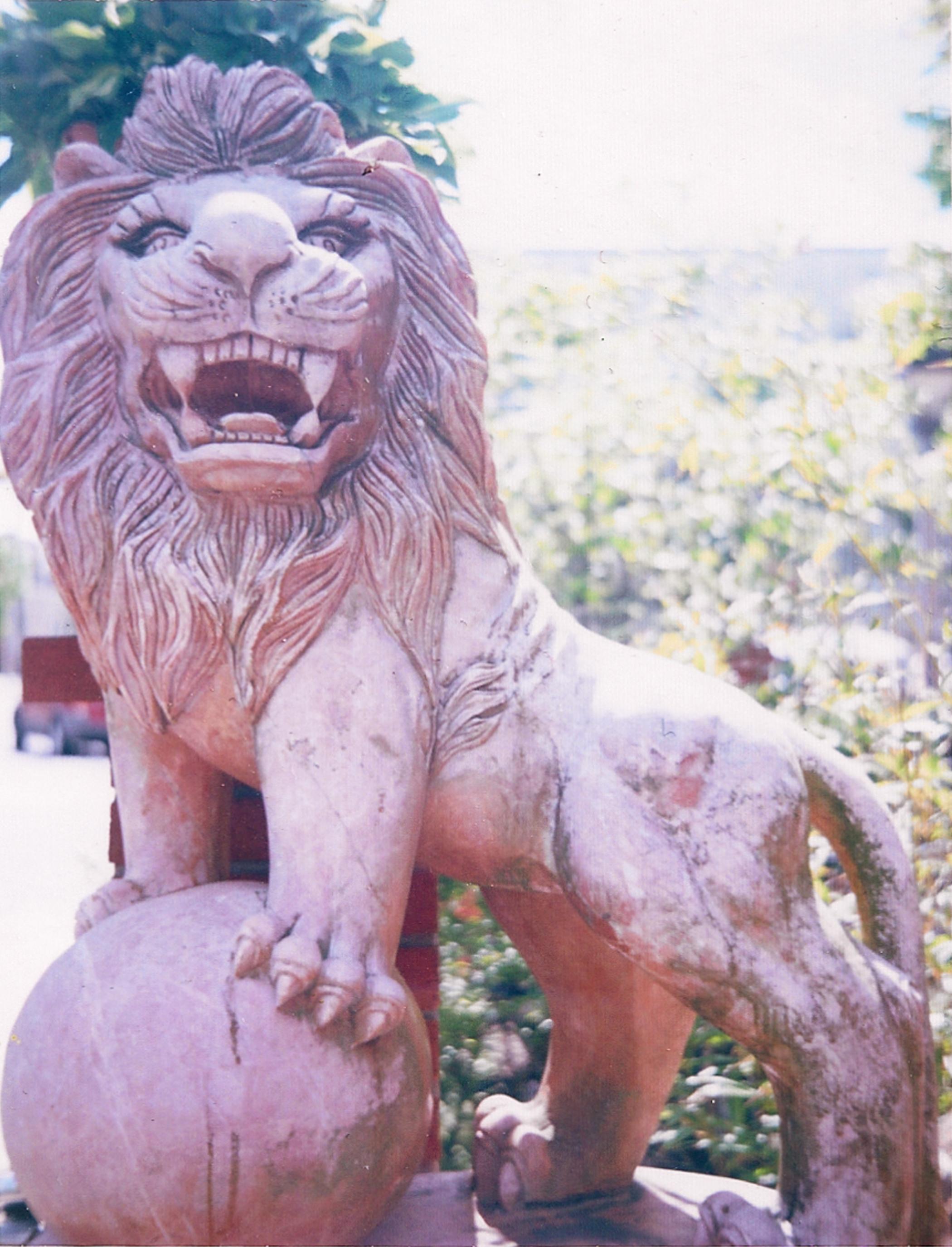 Lion cropped.jpg