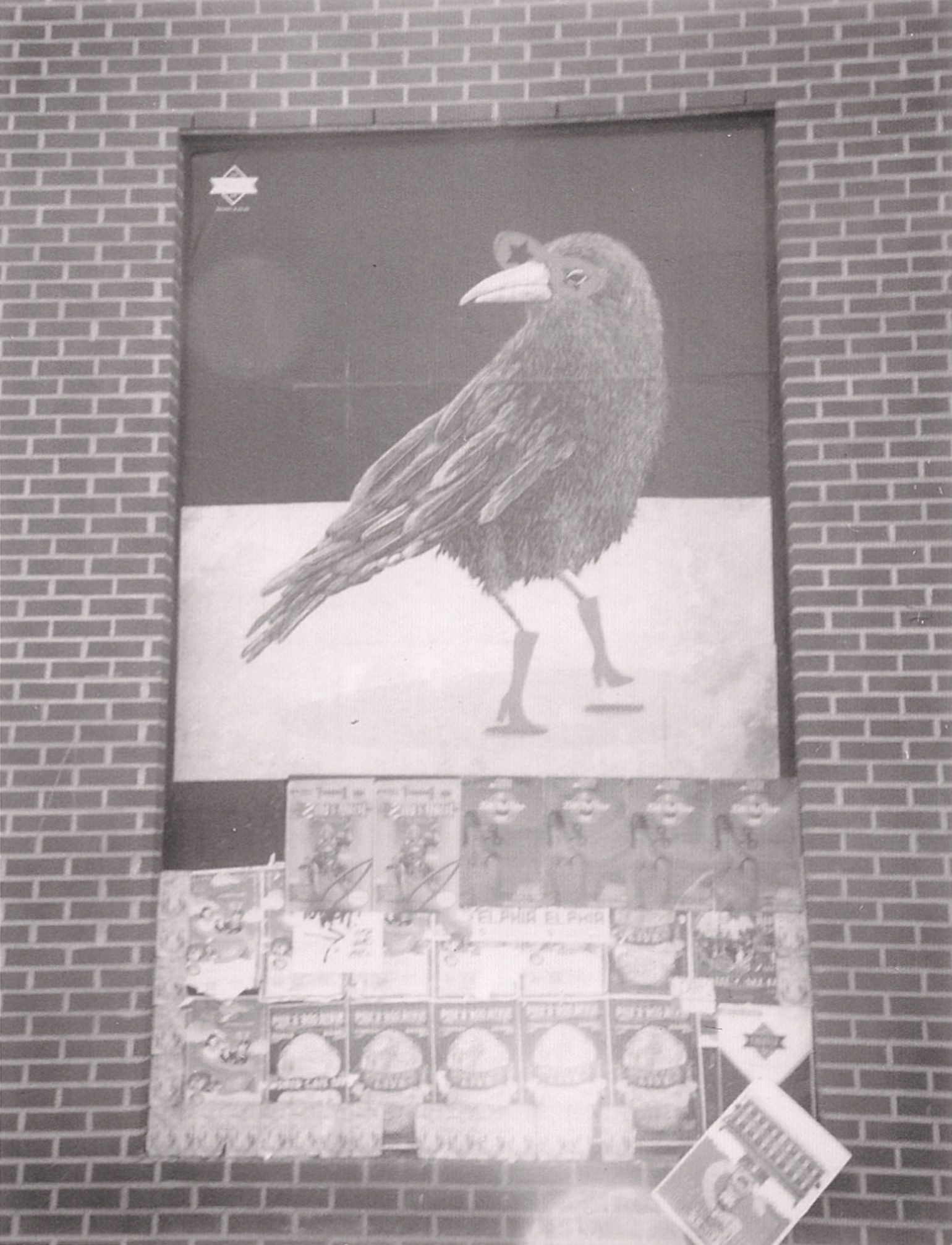 Bird Boots cropped.jpg