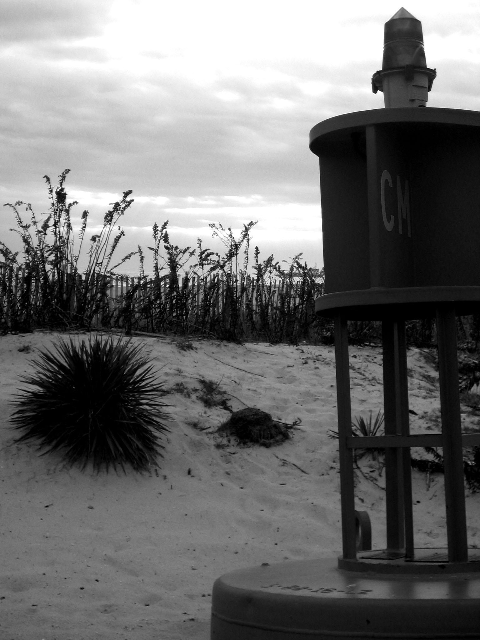 beachlight1.jpg