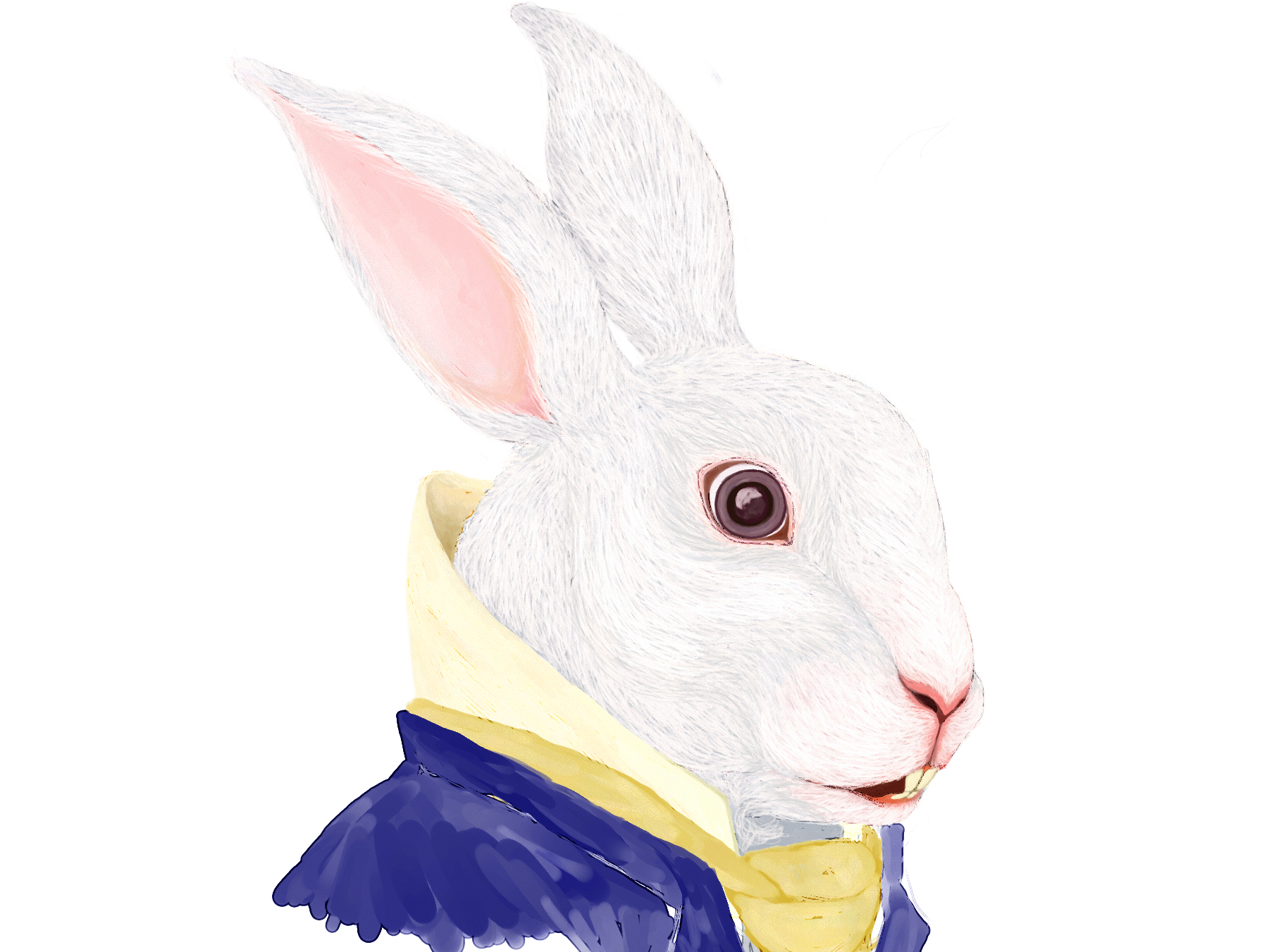 rabbit19cropped.jpg