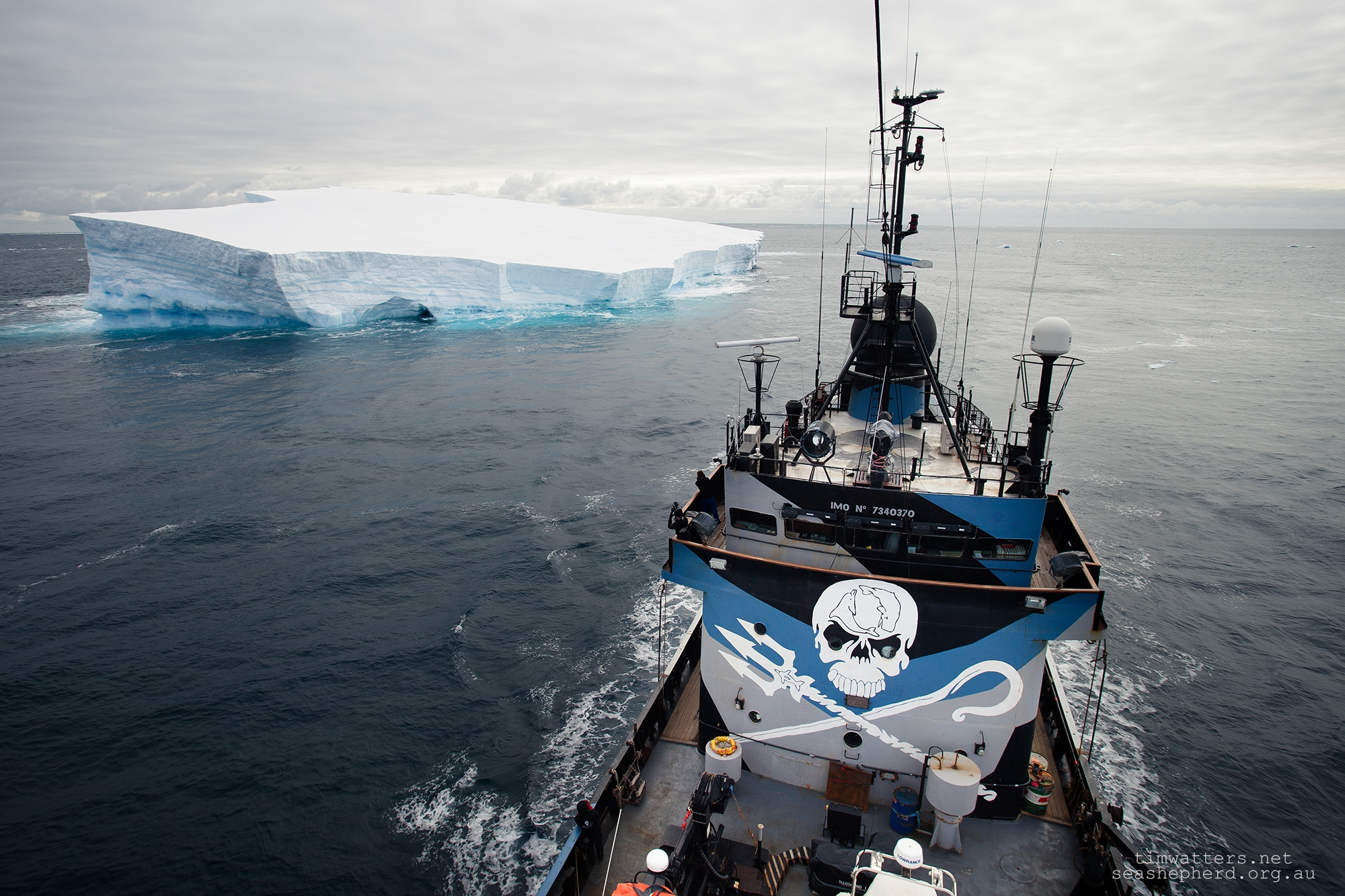 The Steve Irwin sails past an iceberg in the Ross Sea, Antarctica - 2014.