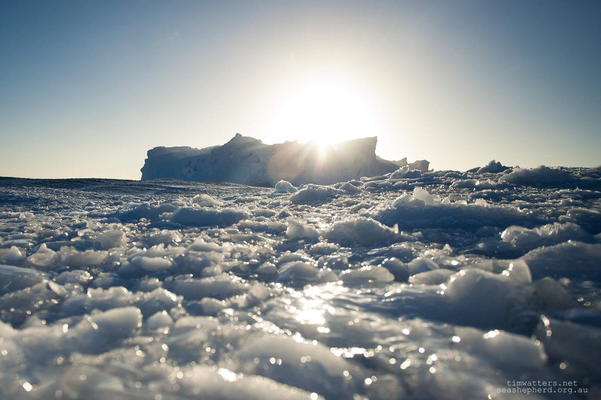 An iceberg as viewed from within the cold water of Antarctica.