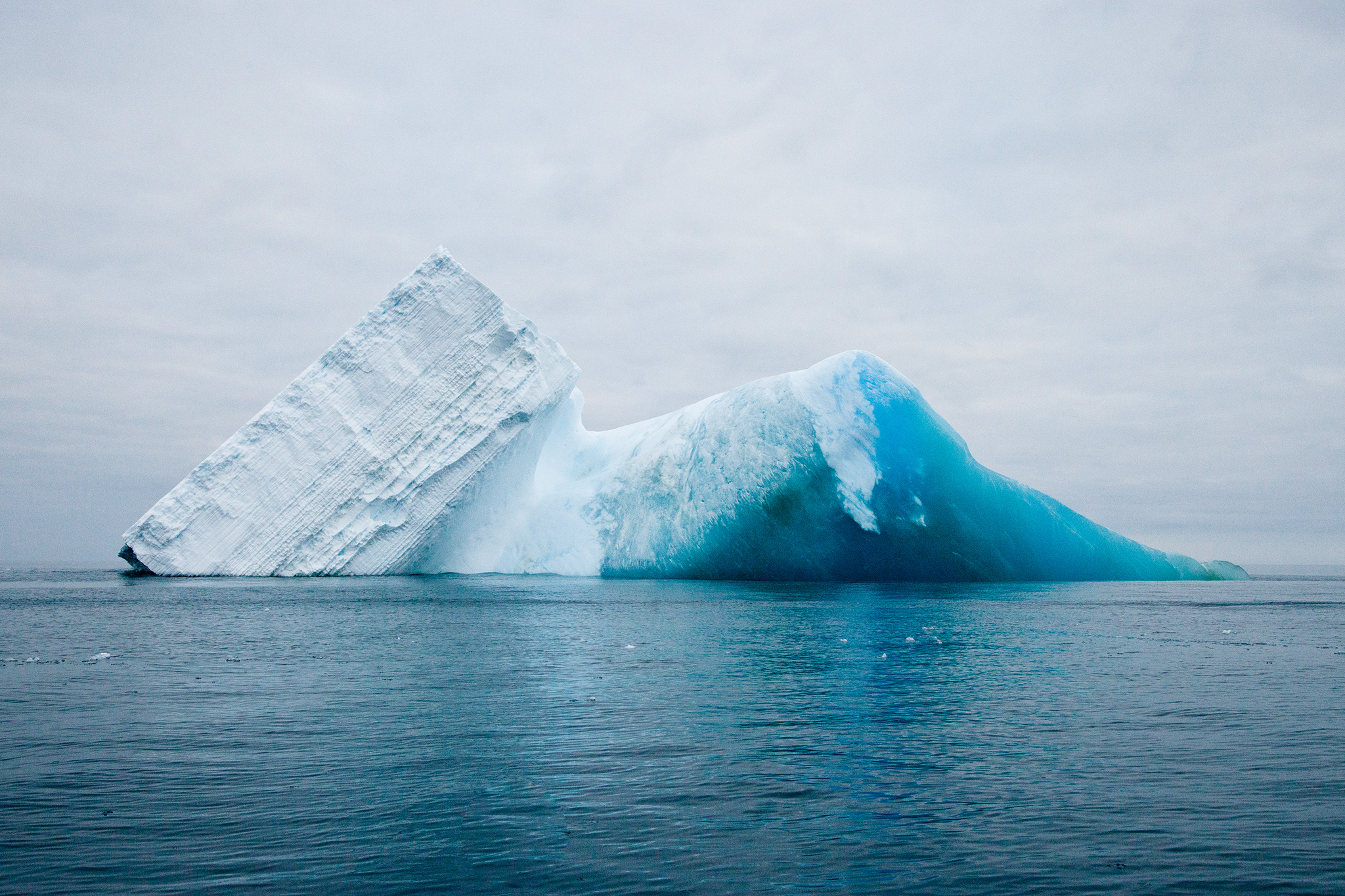 001-TW-Icebergs-130115.jpg