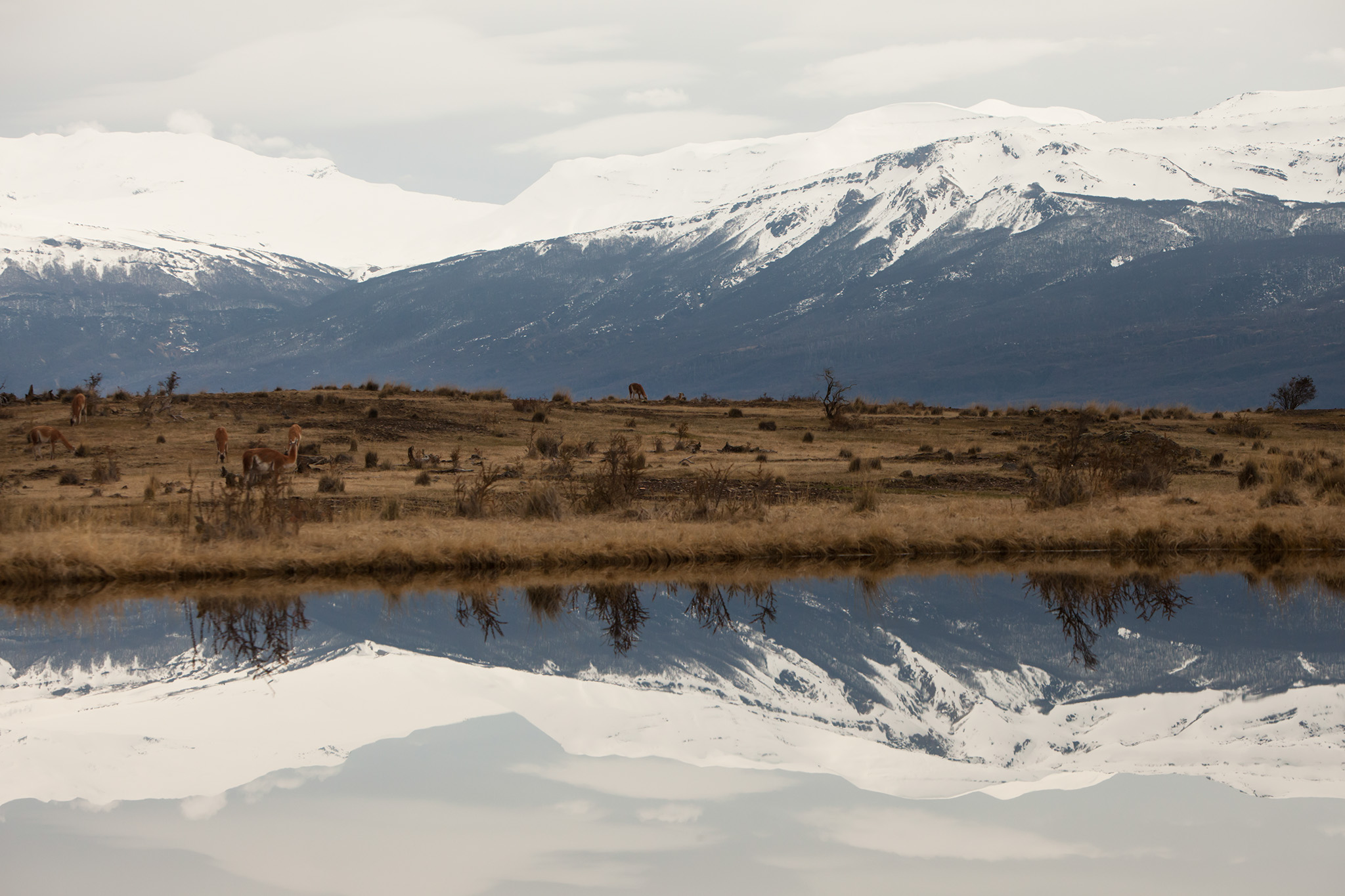 027-TW-Patagonia-140829.jpg