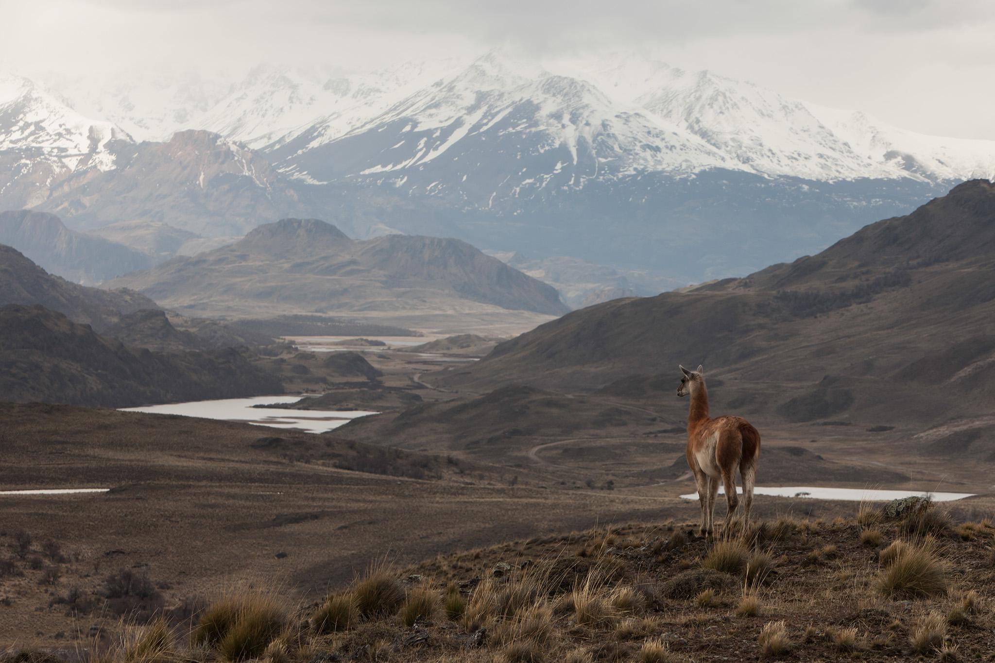 029-TW-Patagonia-140829.jpg