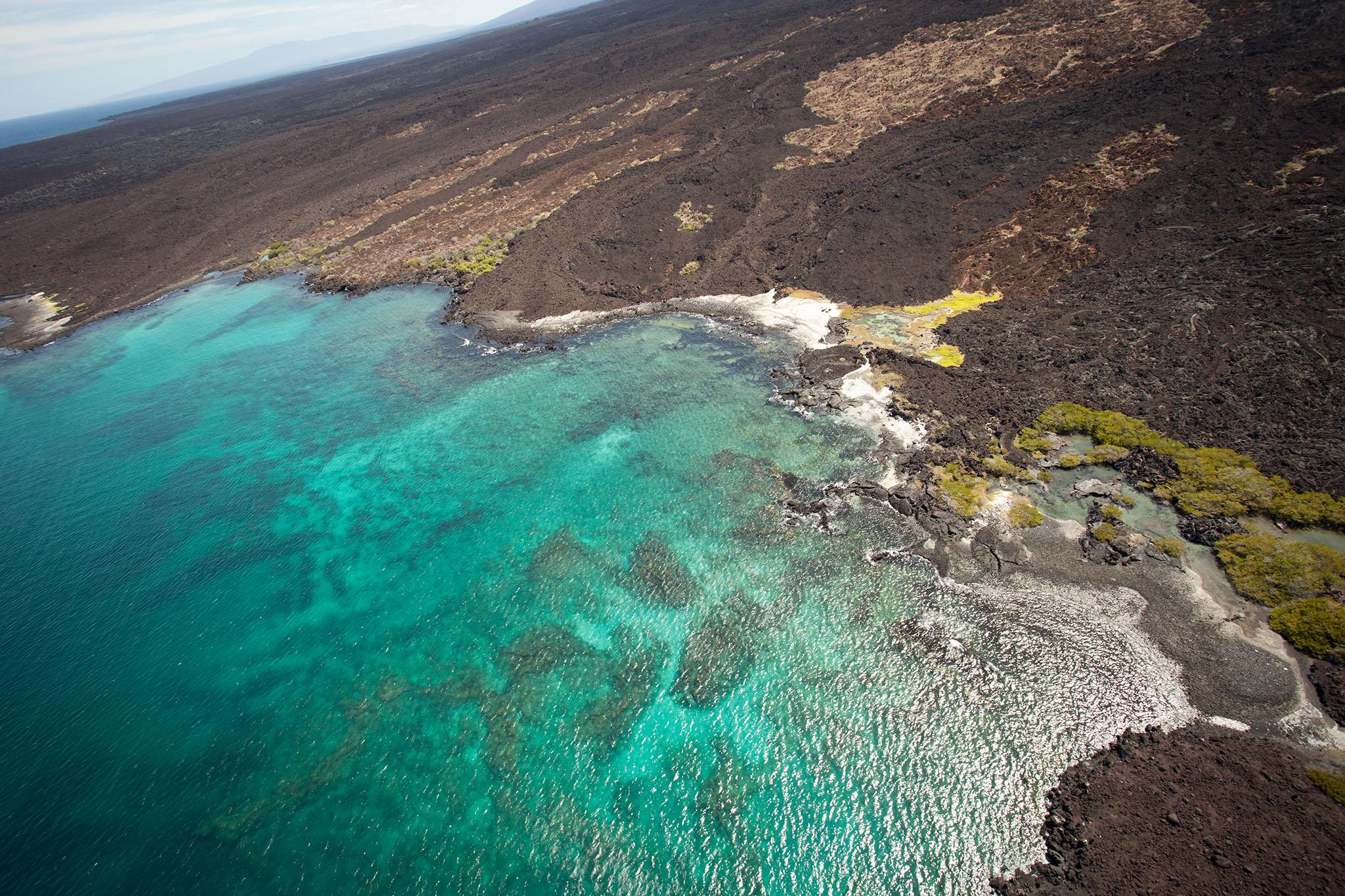 023-TW-Galapagos-121118.jpg