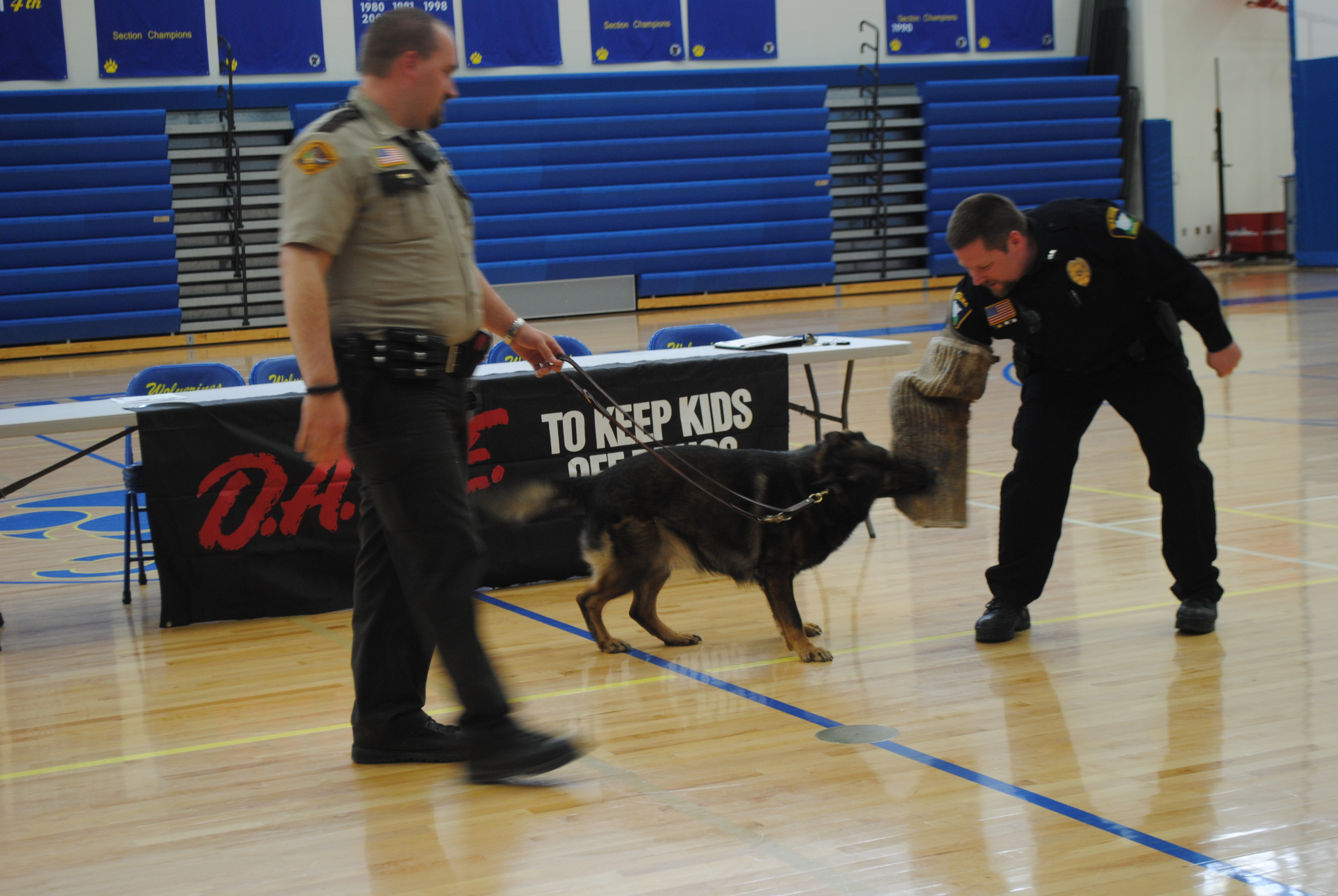 "K9 dog Zeus ""attacks"" the protected arm of Wadena Police Officer Nick Grabe while Zeus's partner, Wadena County Deputy Bryan Savaloja holds on during the demonstration at DARE graduation, April 8 at WDC."