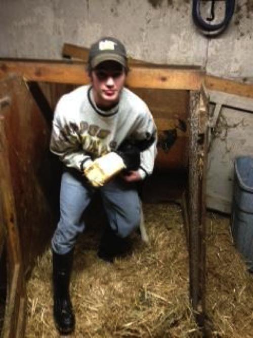 Mitch Janson feeds a newborn calf colostrum in his Dairy Placement Proficiency on Janson Dairy near Wadena. Courtesy photo.