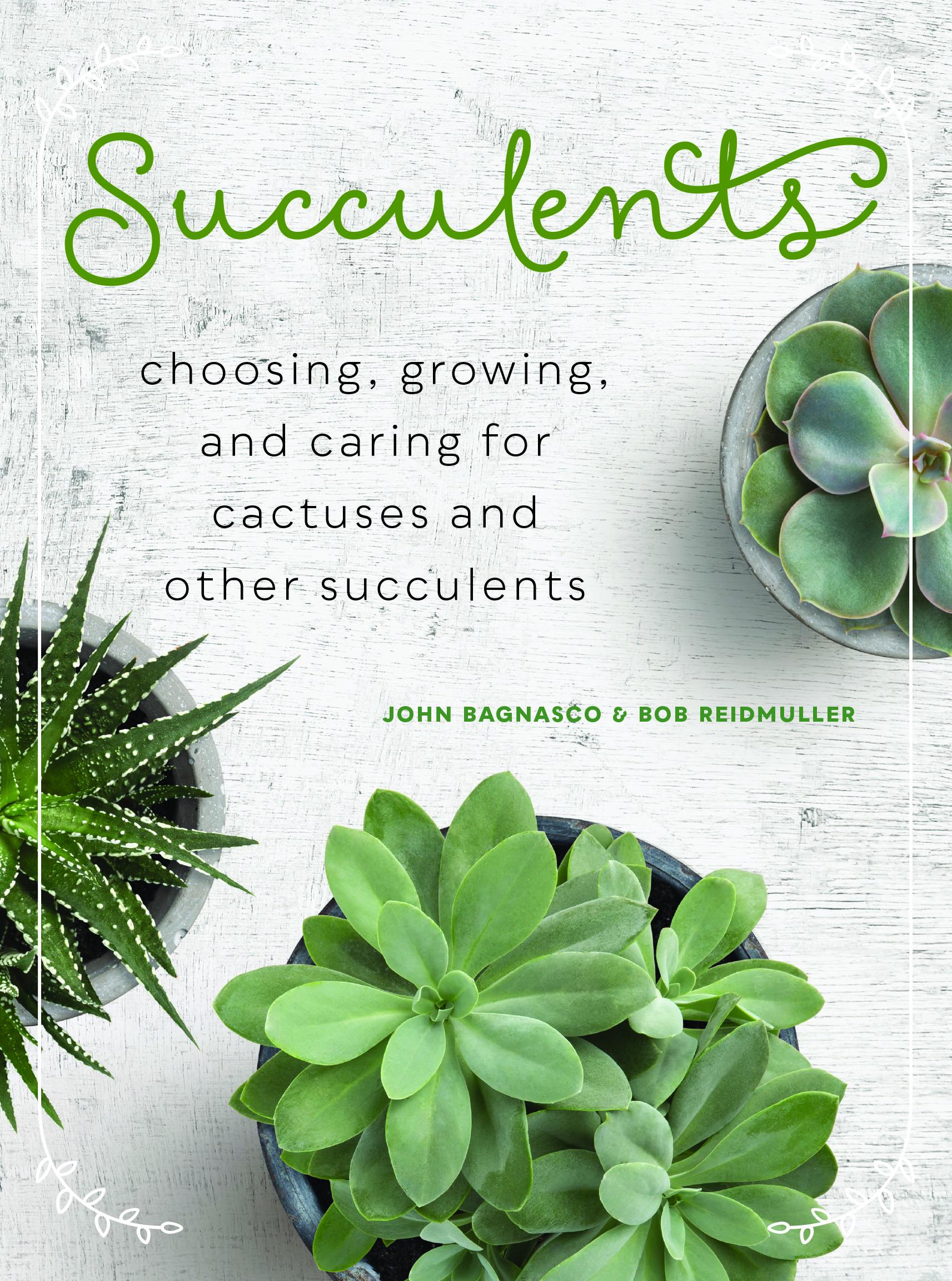 Succulents-FINAL.jpg