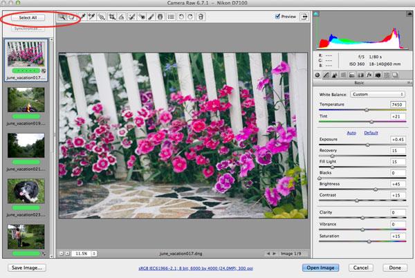 Batch Editing in Adobe Bridge