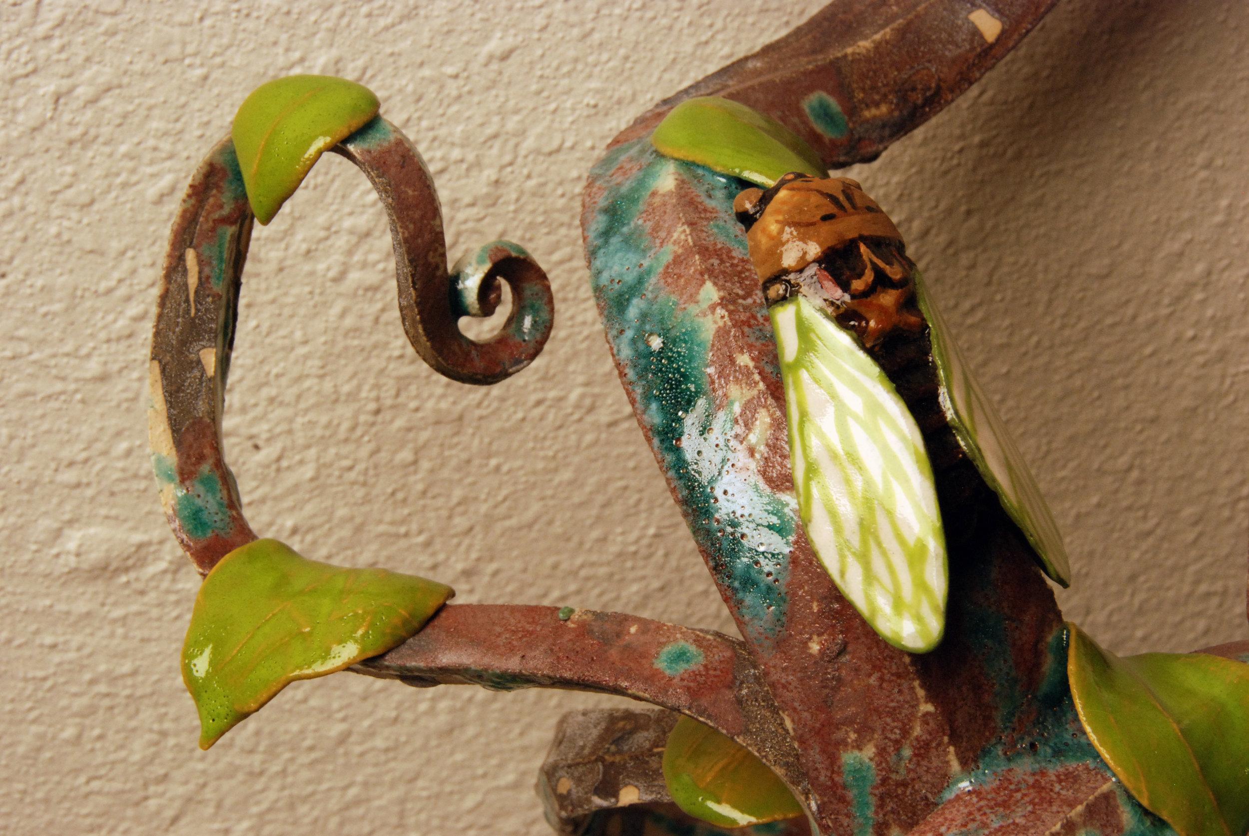cicada4.jpg