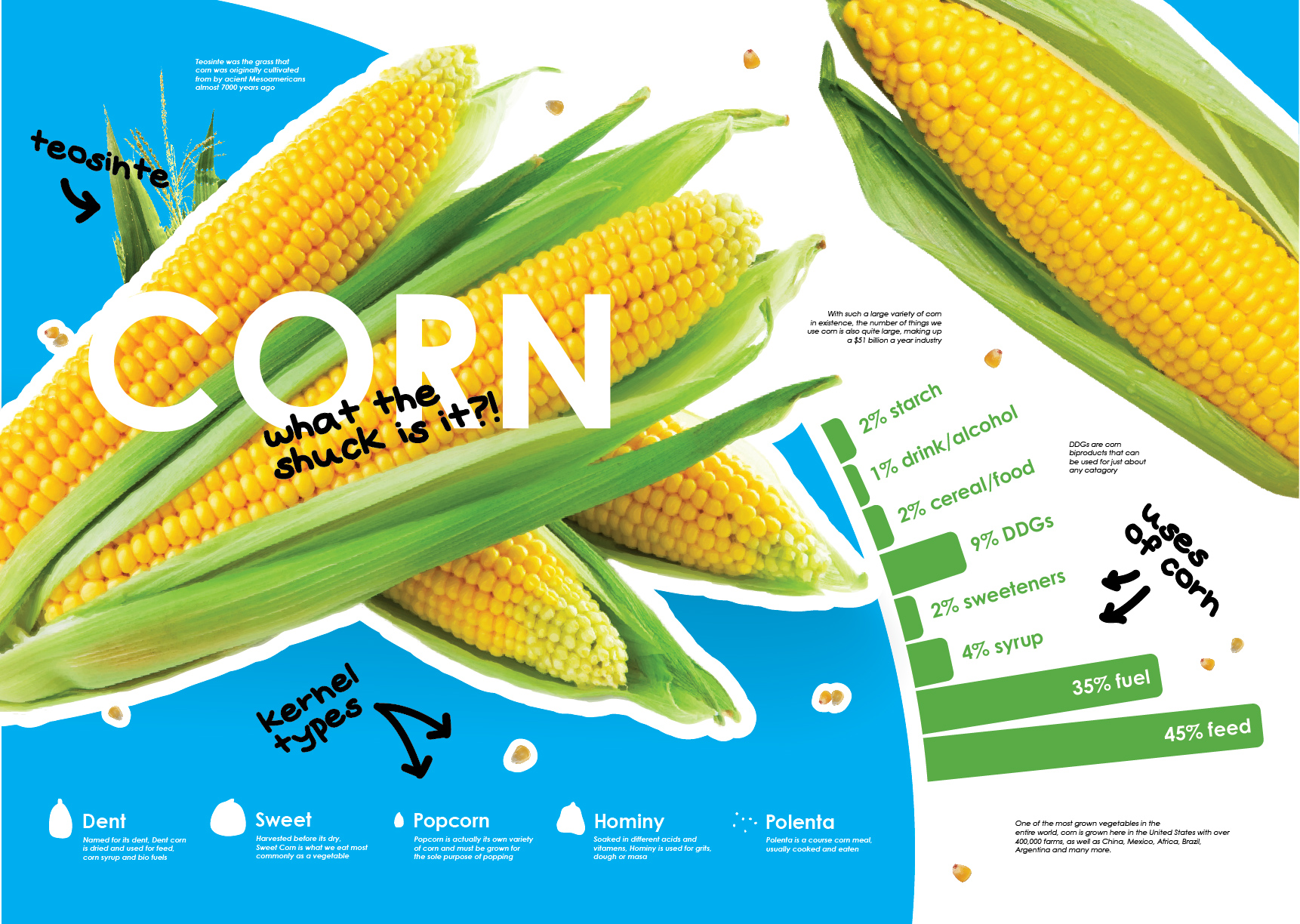 An Information Design project telling the story of corn; from the grass Teosinte and over 7,000 years, corn has encompassed the large scope and scale we   see today.