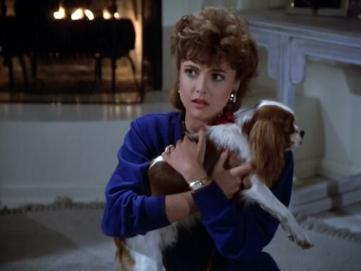 Looks familiar for Dynasty Season 8 opening.  Whatever happens to this dog?