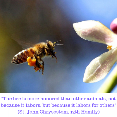 _The bee is more honored than other animals, not because it labors, but because it labors for others_ (12th Homily).png